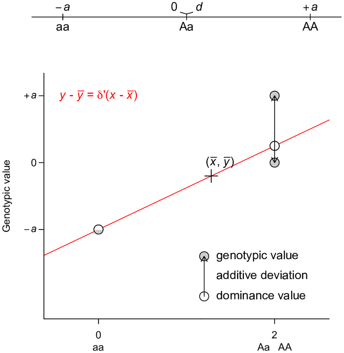 Least squares regression interpretation of VD′.