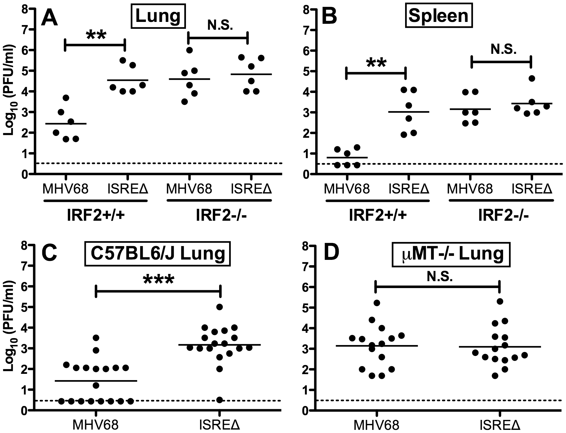 Increased replication of ISREΔ requires IRF2 and B cells.