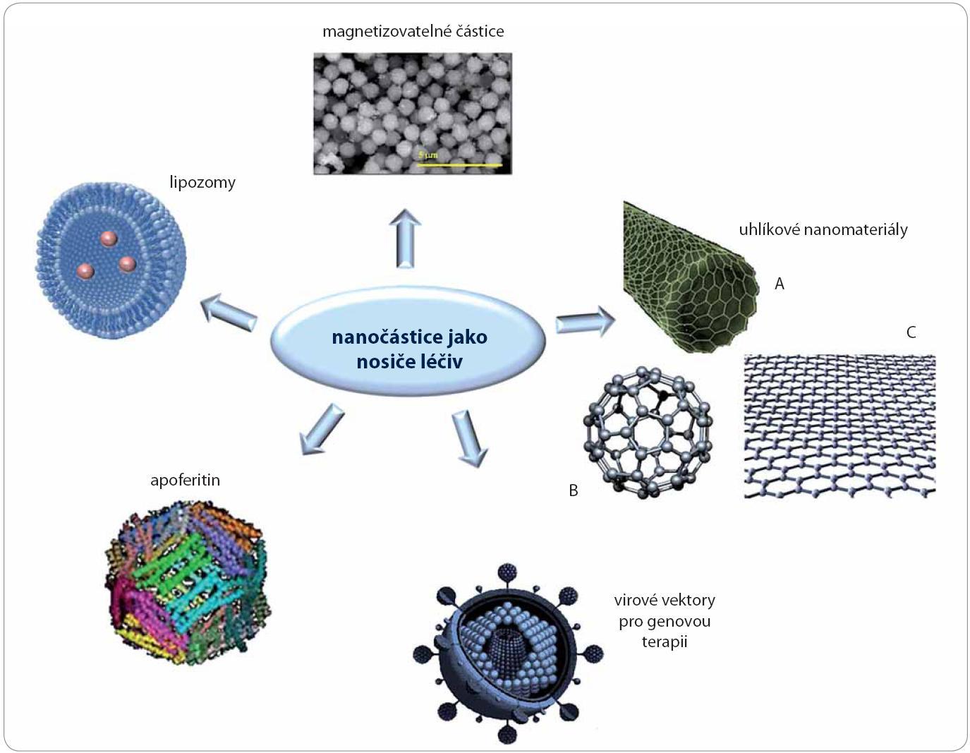 Schéma vybraných nosičů na bázi nanočástic: lipozomy, magnetizovatelné částice, apoferitin, uhlíkové nanomateriály (A – nanotrubice, B – fullereny, C – grafen), virové vektory.
