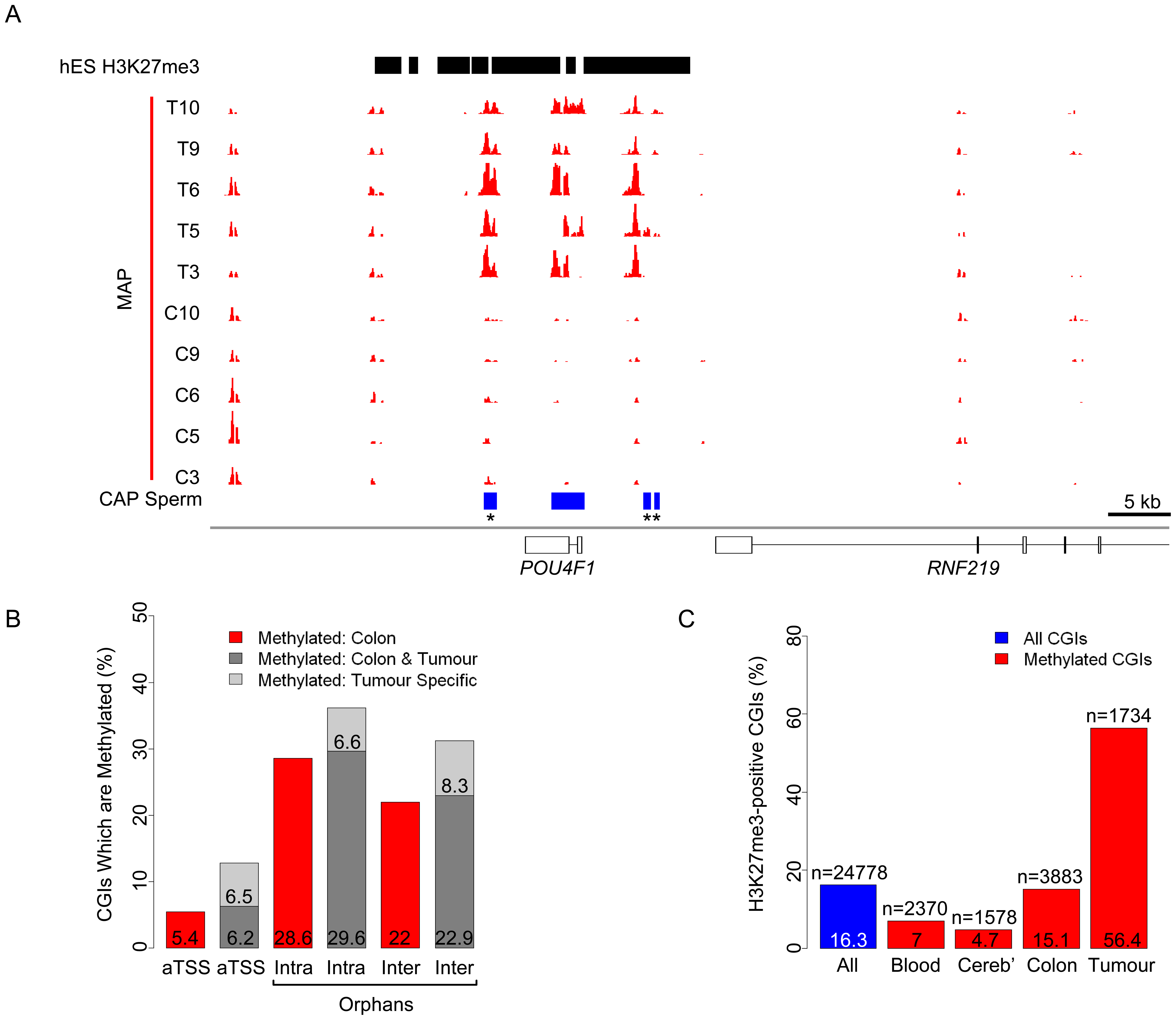 Distinct characteristics of normal and tumour-specific CGI methylation.