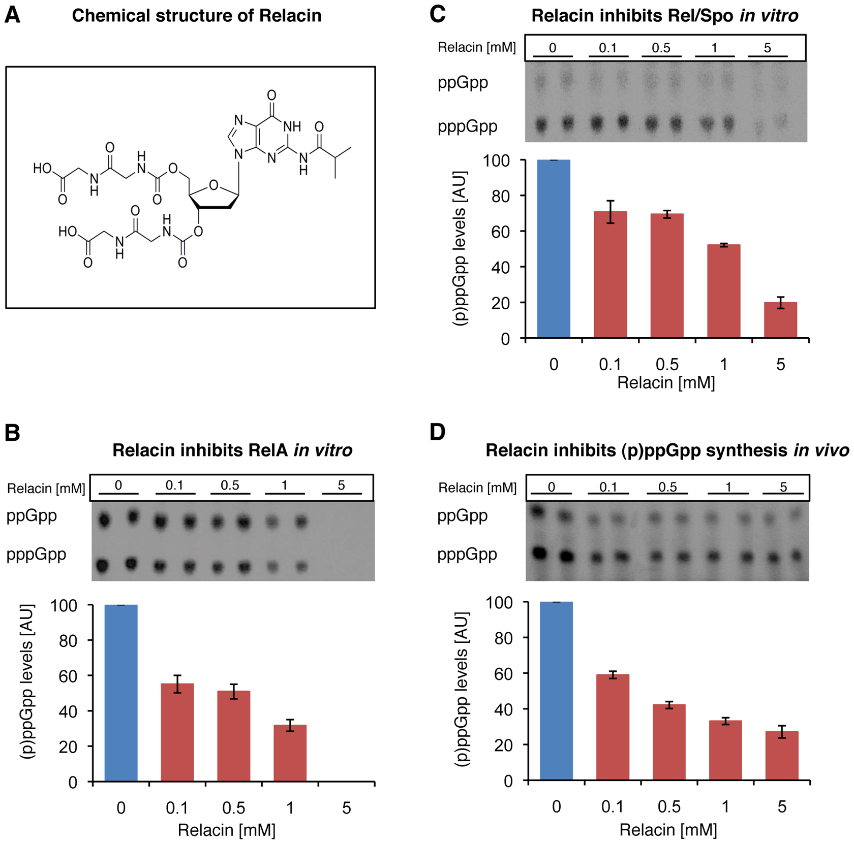 Relacin inhibits the activity of Rel proteins.