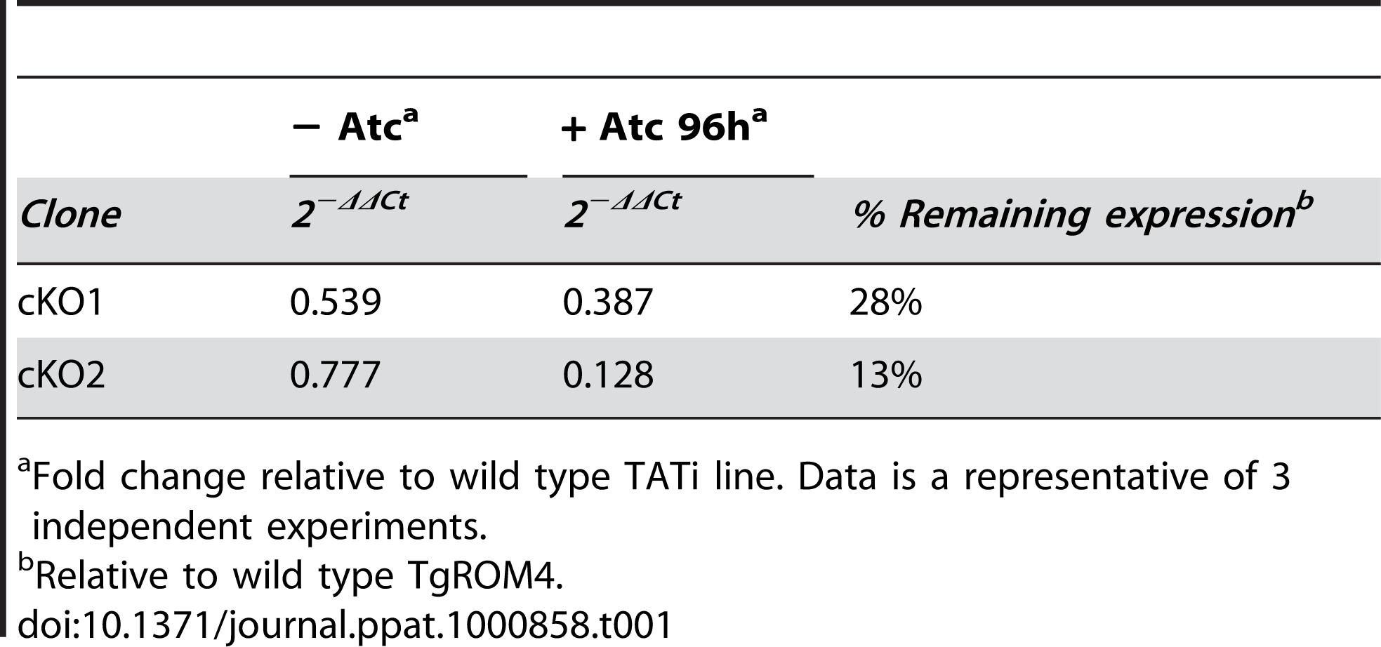 qPCR results for Tet-suppression of <i>HA9-TgROM4</i>.