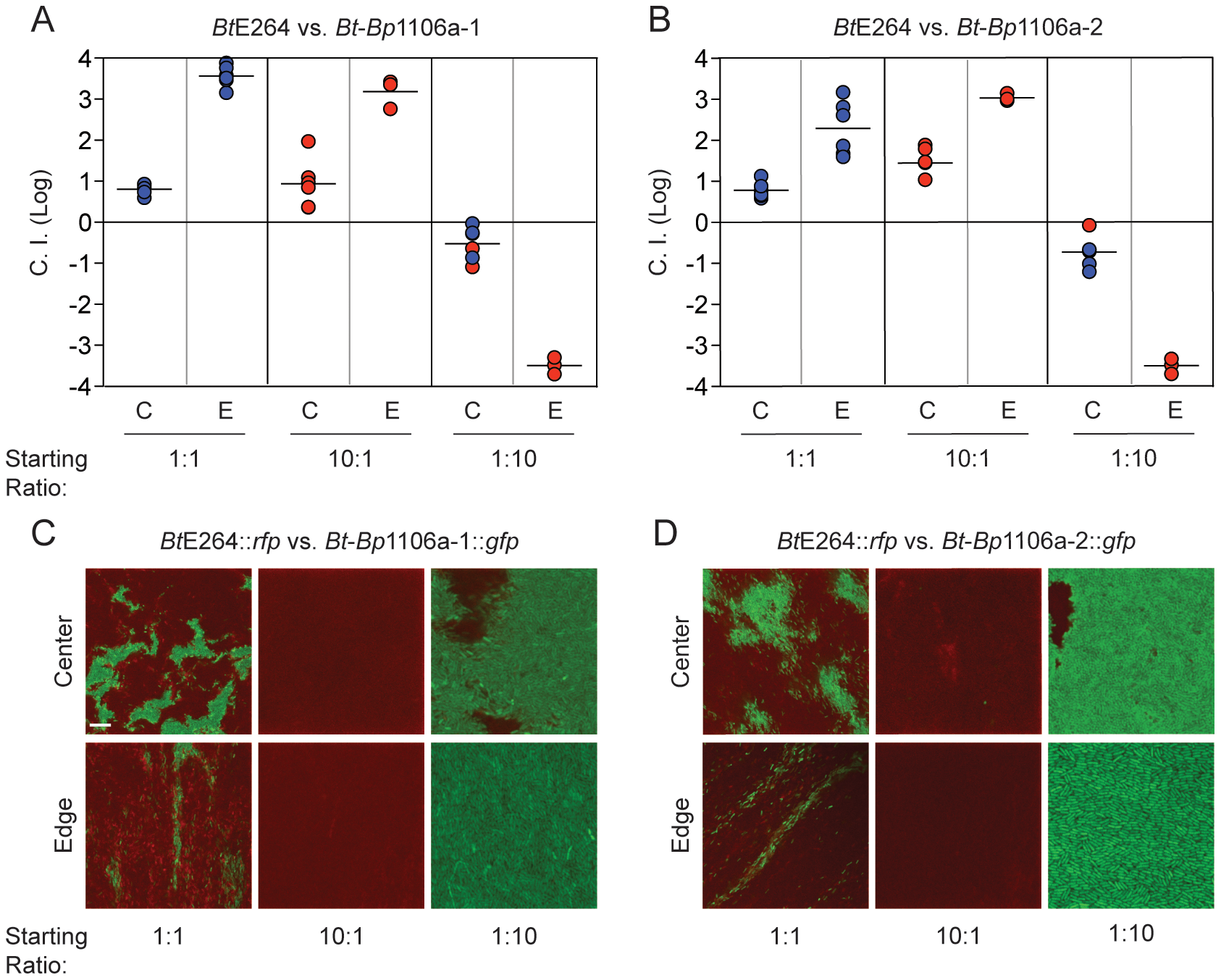 Competition between CDI<sup>+</sup> bacteria expressing different <i>bcpA</i> alleles.