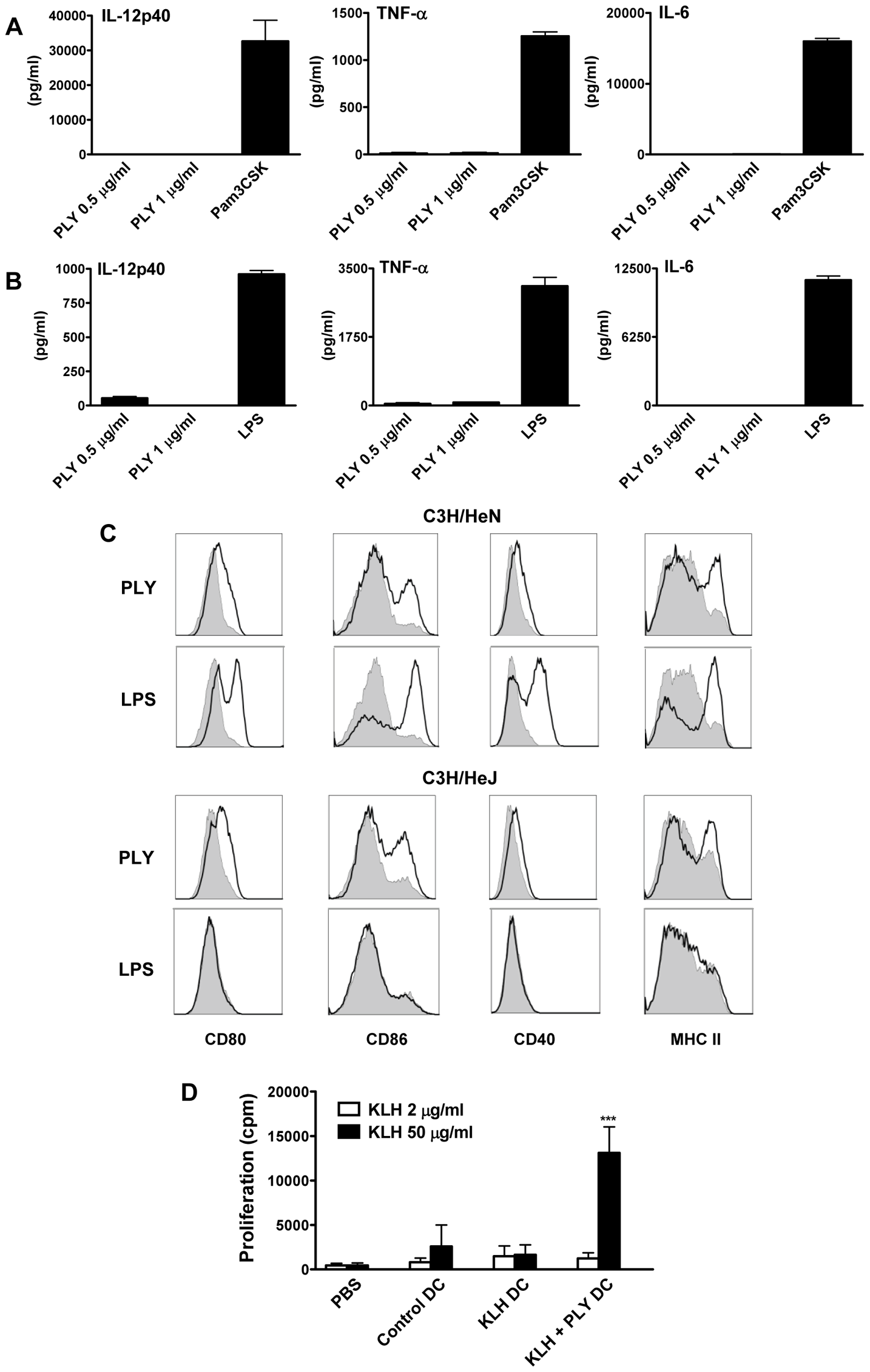 Endotoxin-free PLY does not induce cytokine production by DC or macrophages but does enhance DC maturation in a TLR4-independent manner.