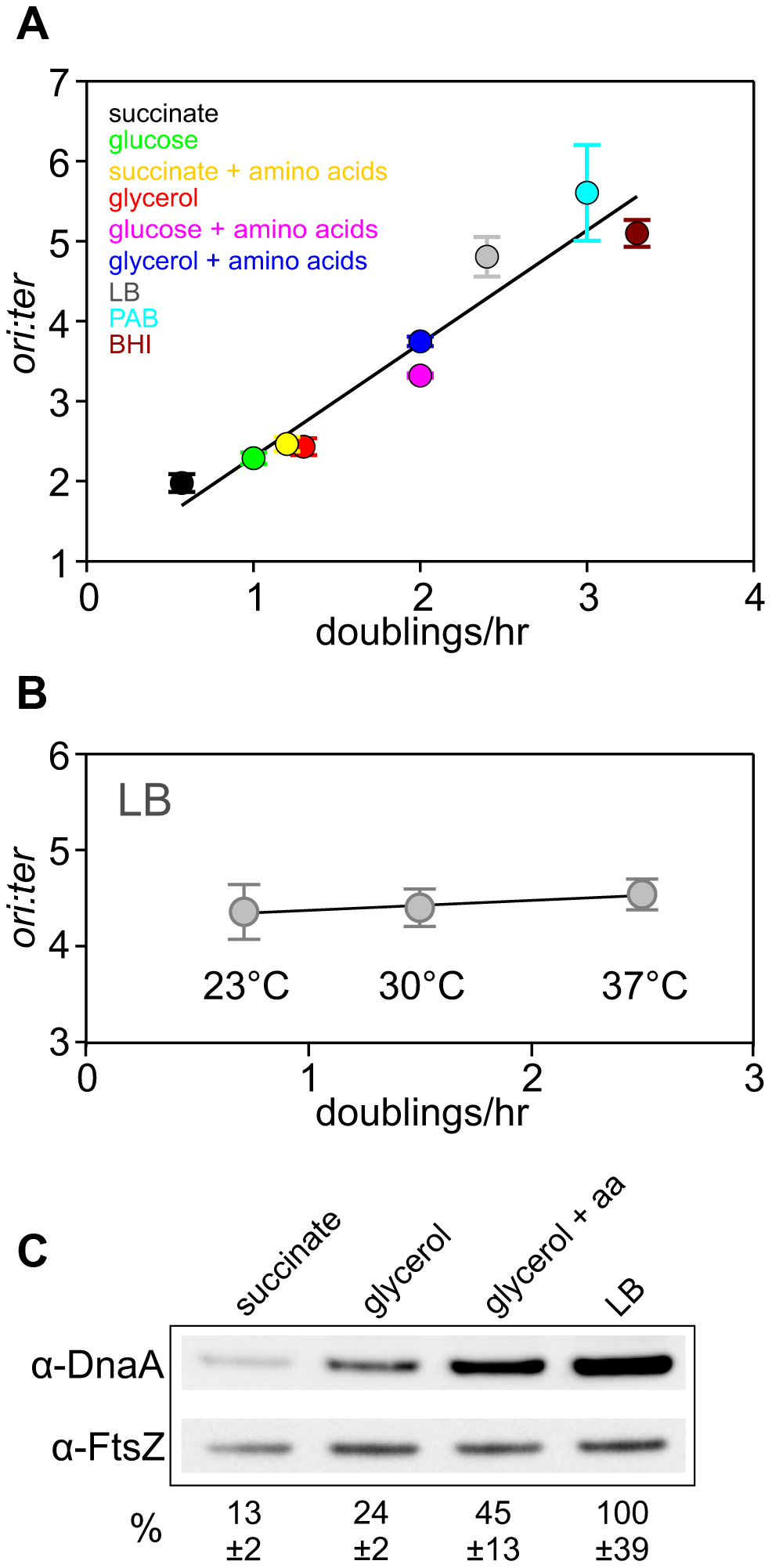 Nutrient-mediated growth rate regulation of DNA replication initiation in <i>B. subtilis</i>.