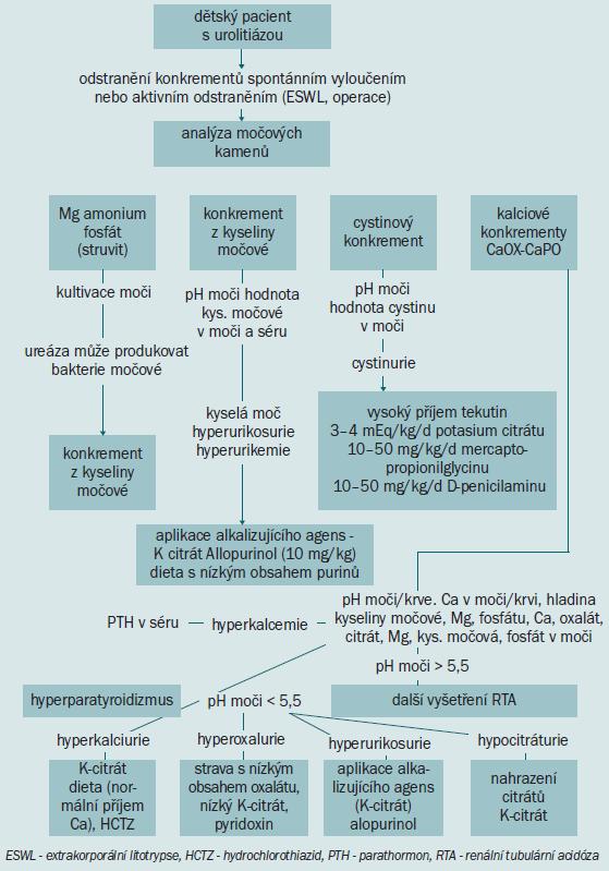 Schéma 3. Algoritmus poskytující informaci týkající se metabolického vyšetření a plánování medikamentózní léčby.