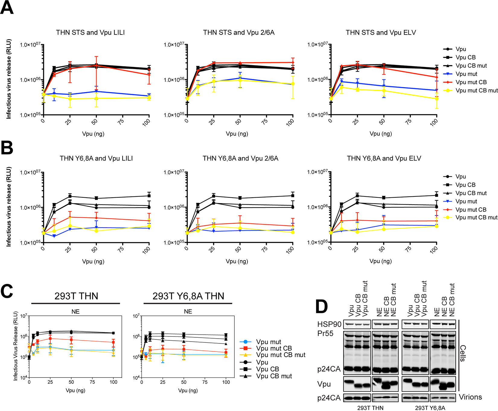 Clathrin box rescue of Vpu mutants is dependent on tetherin's Y6,8 sorting signal.