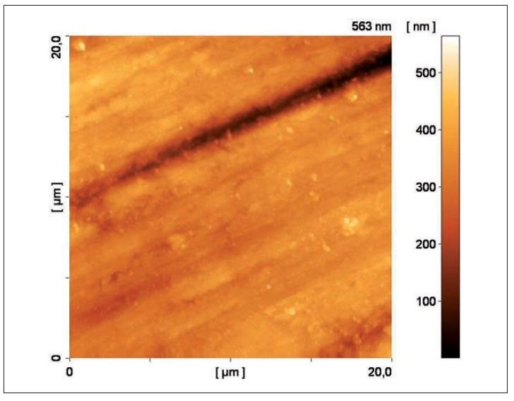 Topografie povrchu sklovinného vzorku. AFM