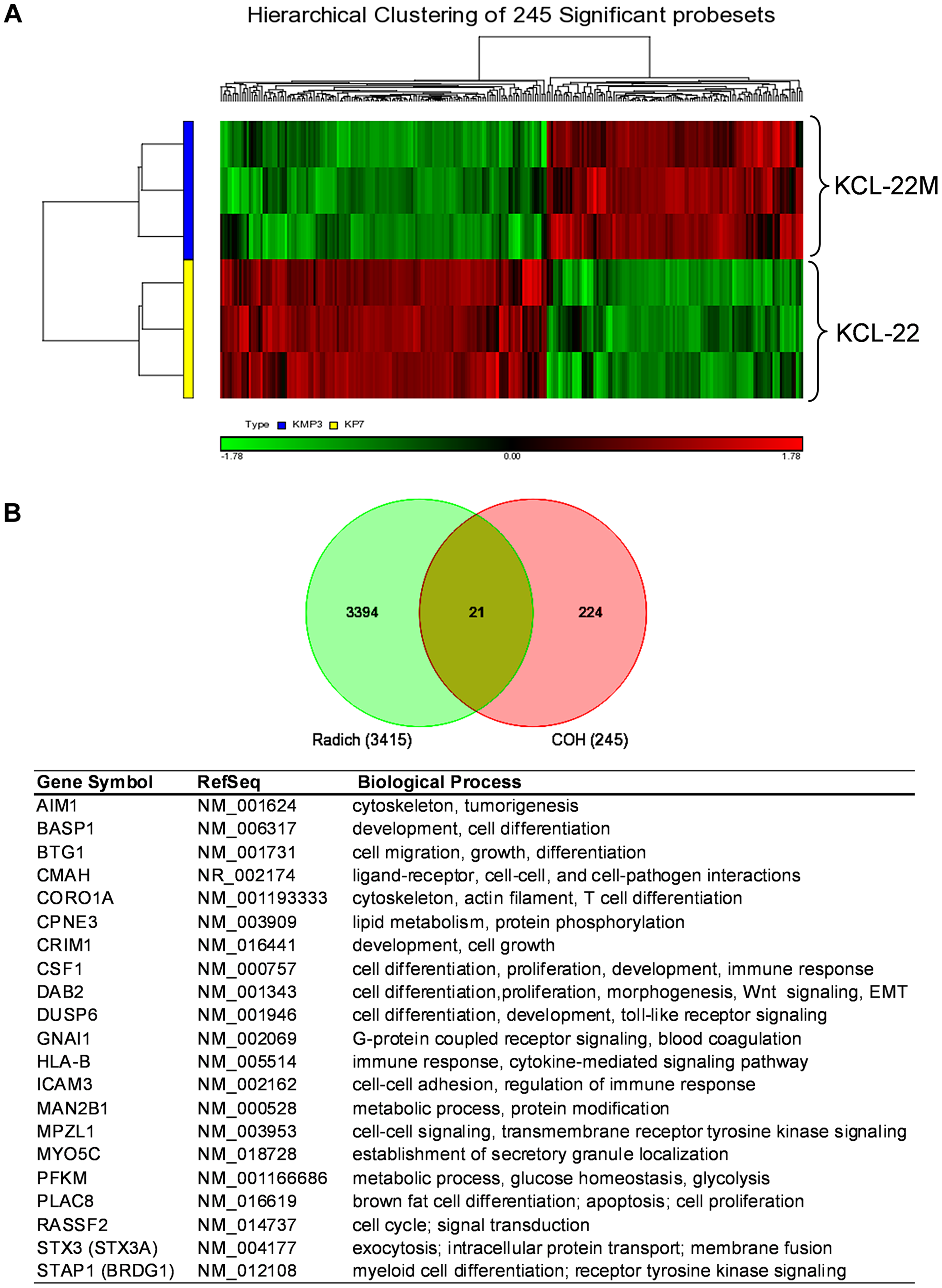Microarray gene expression analysis of KCL-22 vs KCL-22M cells.