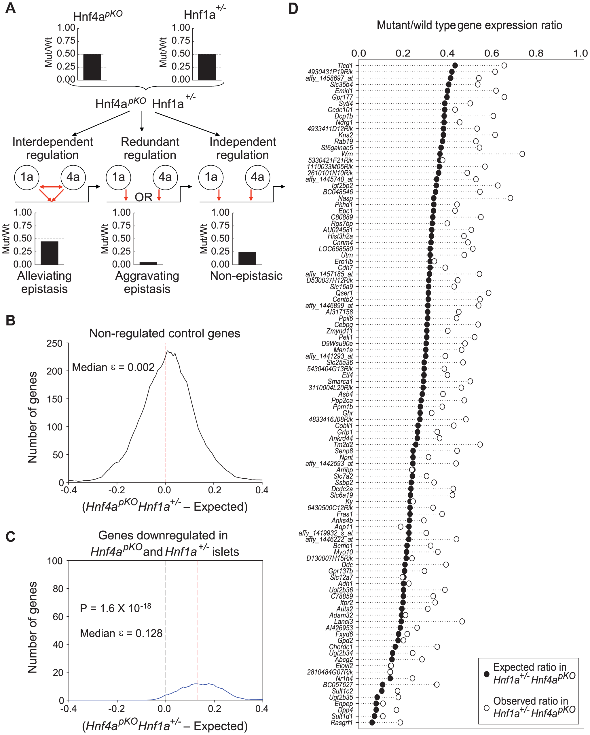 Epistasis reveals functional synergism between Hnf1α and Hnf4α.