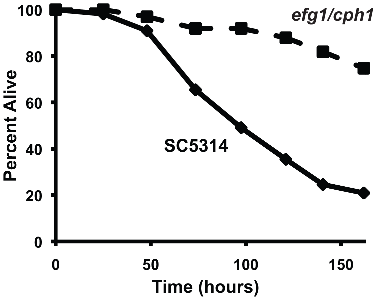 A <i>C. albicans</i> double mutant strain that is attenuated for pathogenicity in mammals is also unable to efficiently kill <i>C. elegans</i>.