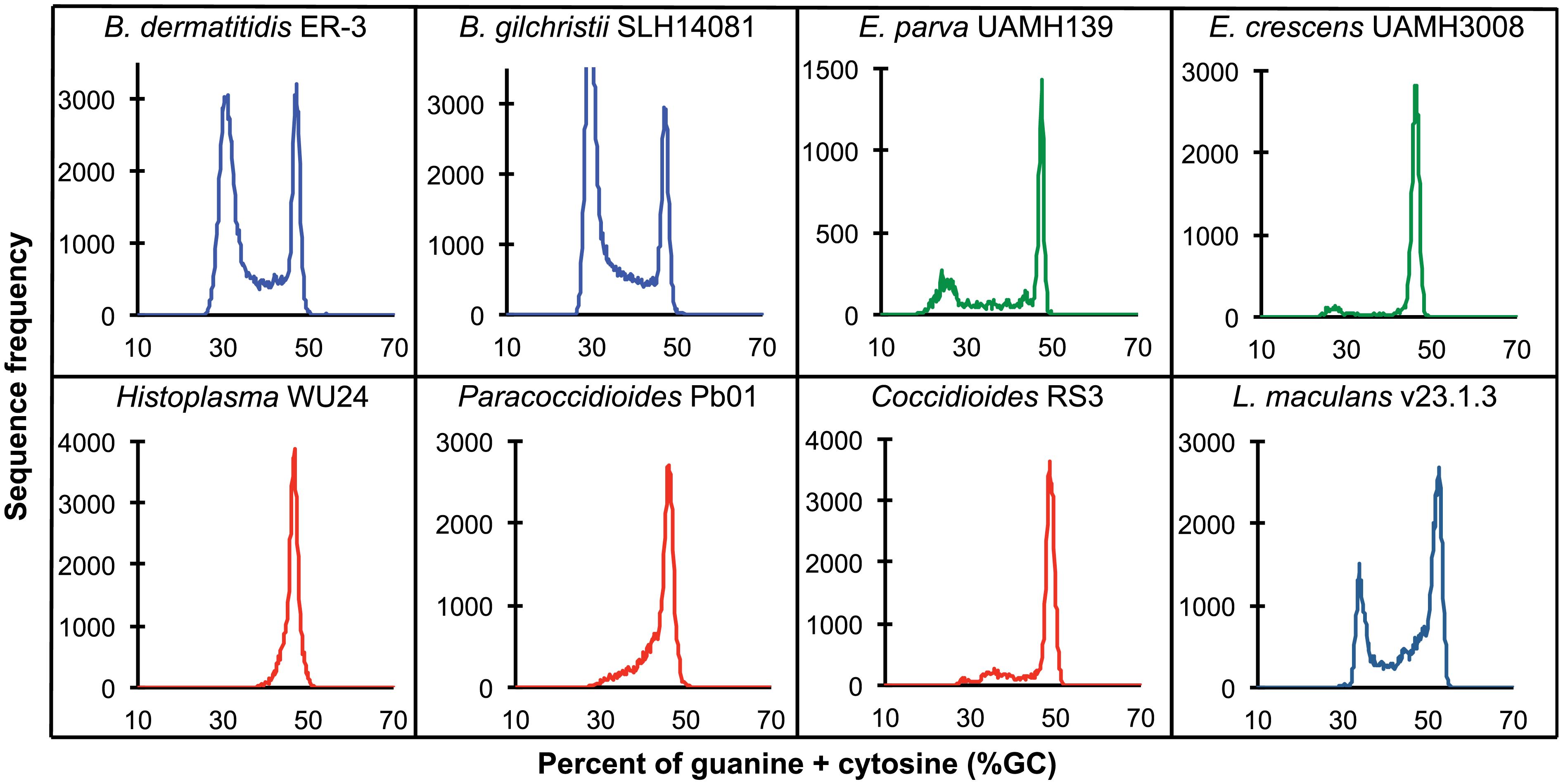 GC frequency distributions (histograms) of overlapping fragments (windows, of 32 kb) of the genome assemblies of <i>Blastomyces dermatitidis</i> ER-3, <i>B</i>. <i>gilchristii</i> SLH14081, <i>Emmonsia parva</i> (UAMH139), <i>E</i>. <i>crescens</i> (UAMH3008), <i>Histoplasma capsulatum</i> (WU24), <i>Paracoccidioides lutzii</i> (Pb01), <i>Coccidioides immitis</i> (RS3), and <i>Leptosphaeria maculans</i> (v23.1.3).