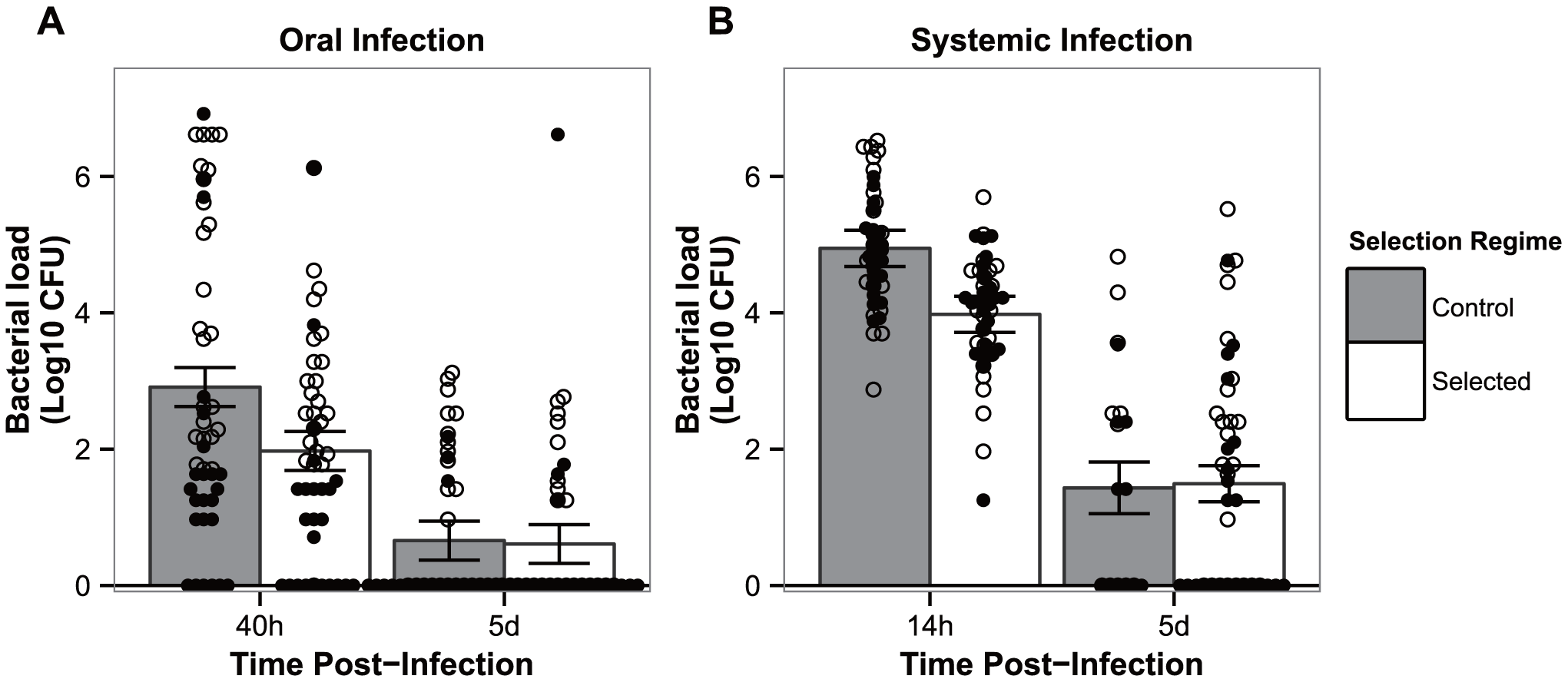 Flies have evolved resistance against <i>P. entomophila</i> infection.