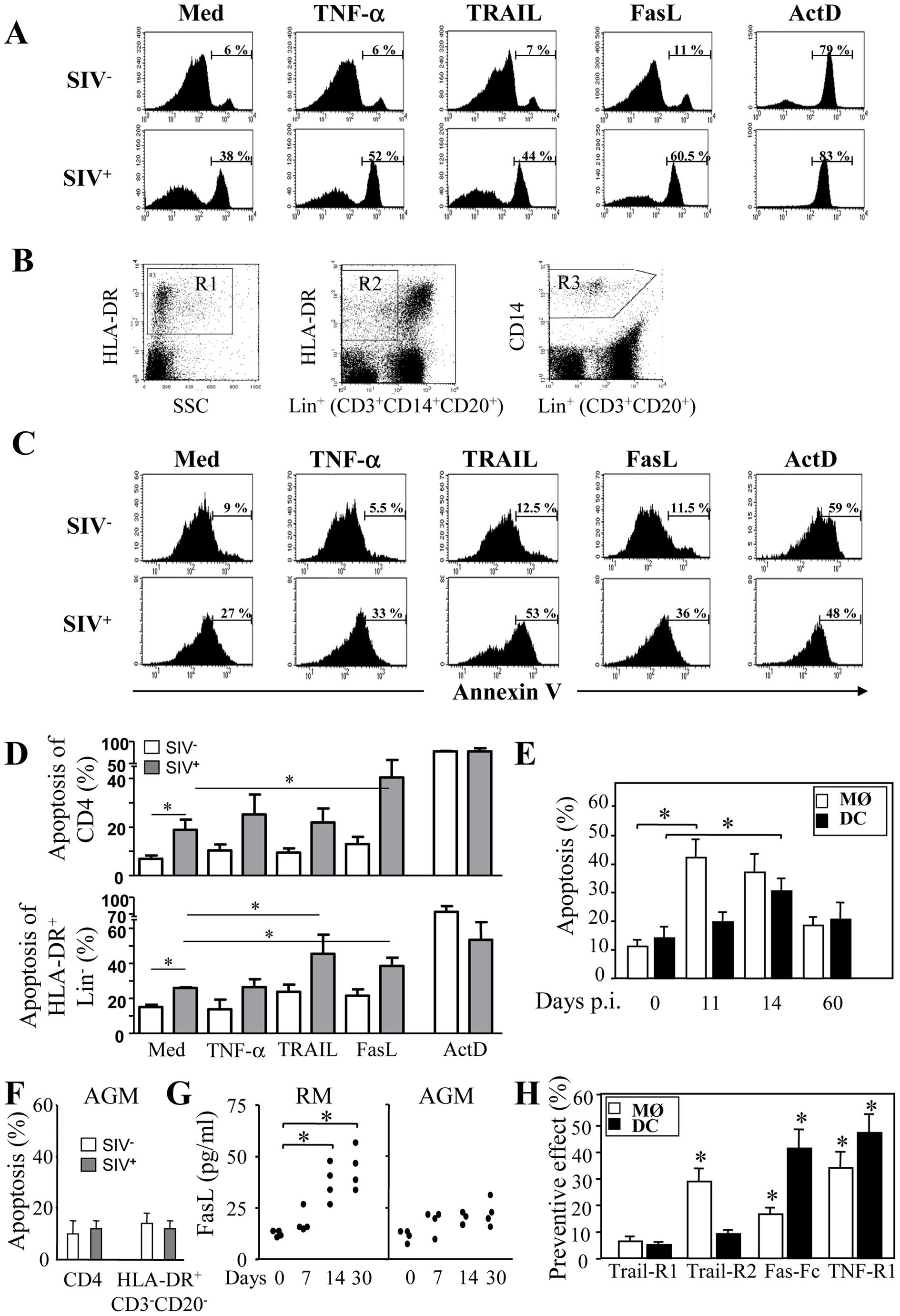 Increased apoptosis of monocytes and DCs during primary SIV infection.