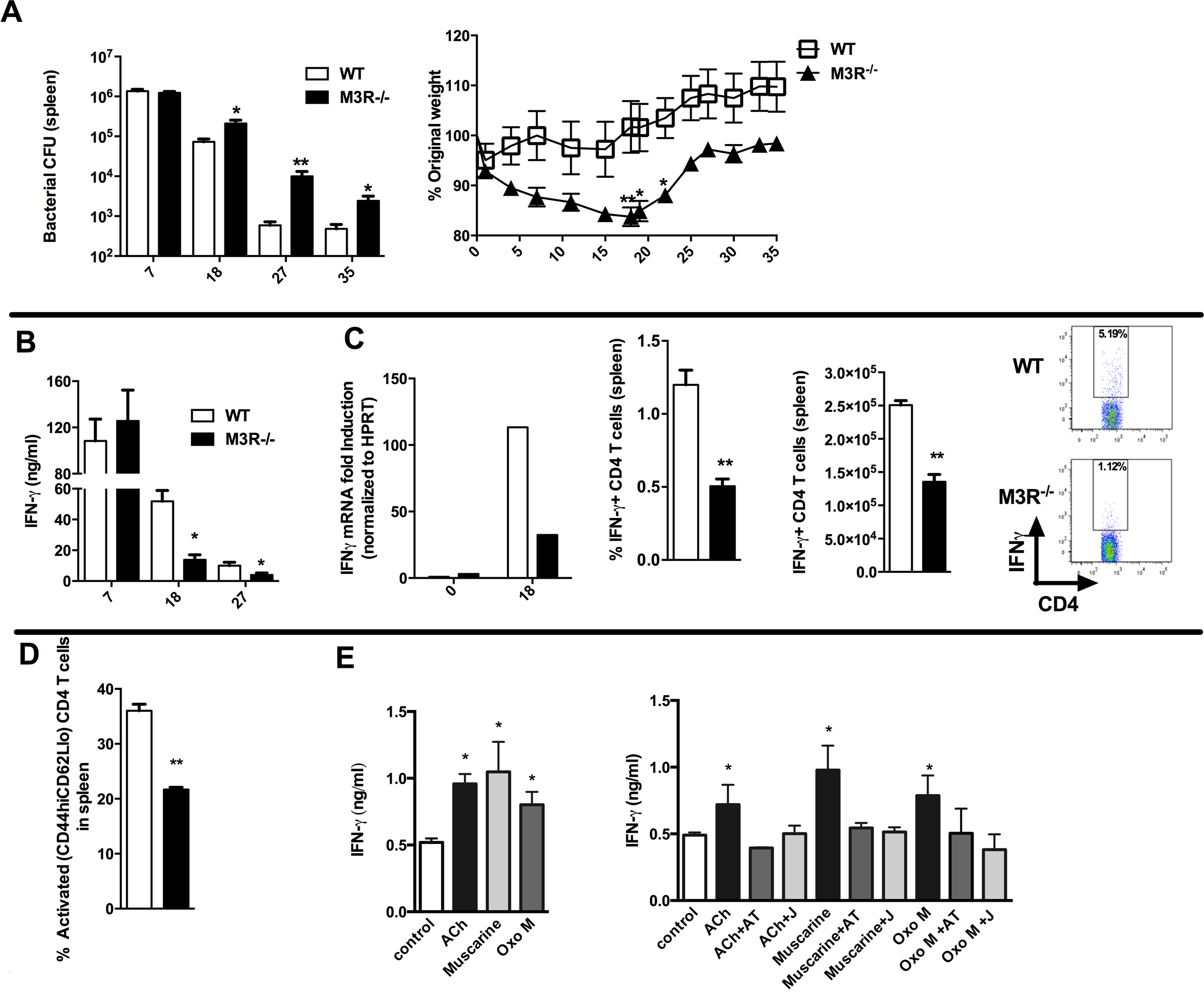 M3R deficient mice are more susceptible to <i>S. typhimurium</i> infection and exhibit impaired CD4 T cell responses.
