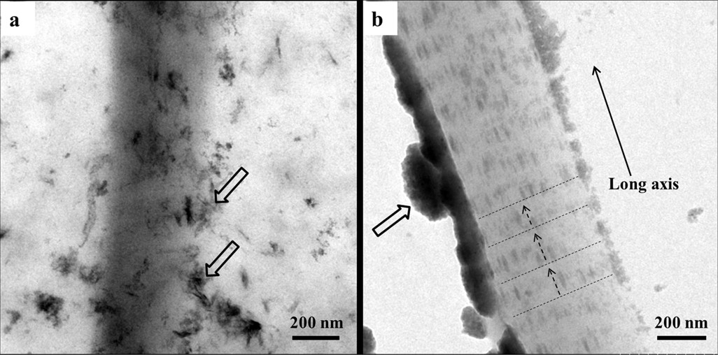 Representative TEM images of unstained samples of collagen fibrils. (a), a collagen fibril mineralized with SBF, the open arrows indicating needle-like crystals as extrafibrillar minerals; (b), a collagen fibril mineralized with nanocomplexes of CMC/ACP regained by dissolving their scaffolds in SBF solution, the open arrows indicating nanocomplexes of CMC/ACP, the dash lines indicating the cross-bandings formed by mineral crystals and the arrows of dash line denoting the orientation of mineral crystals.