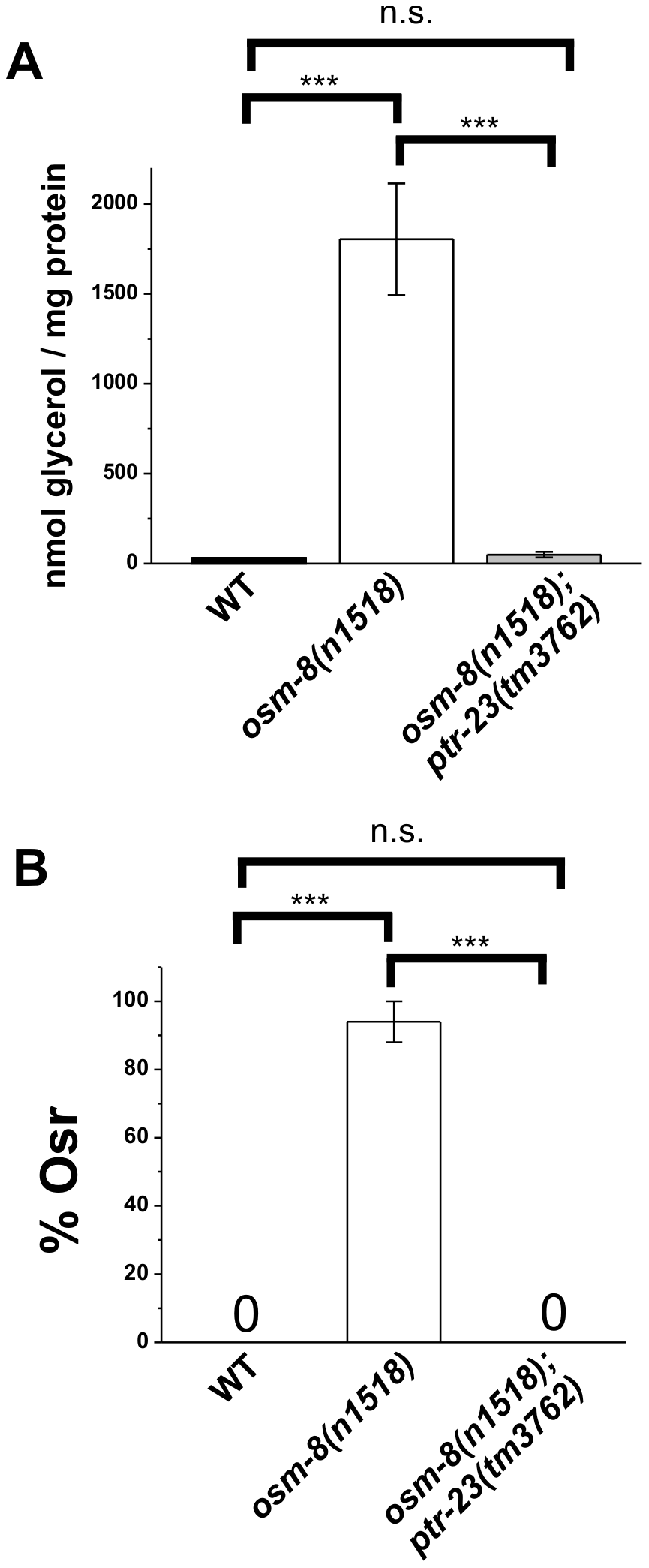 <i>ptr-23</i> is required for <i>osm-8</i>–induced glycerol accumulation and Osr phenotypes.