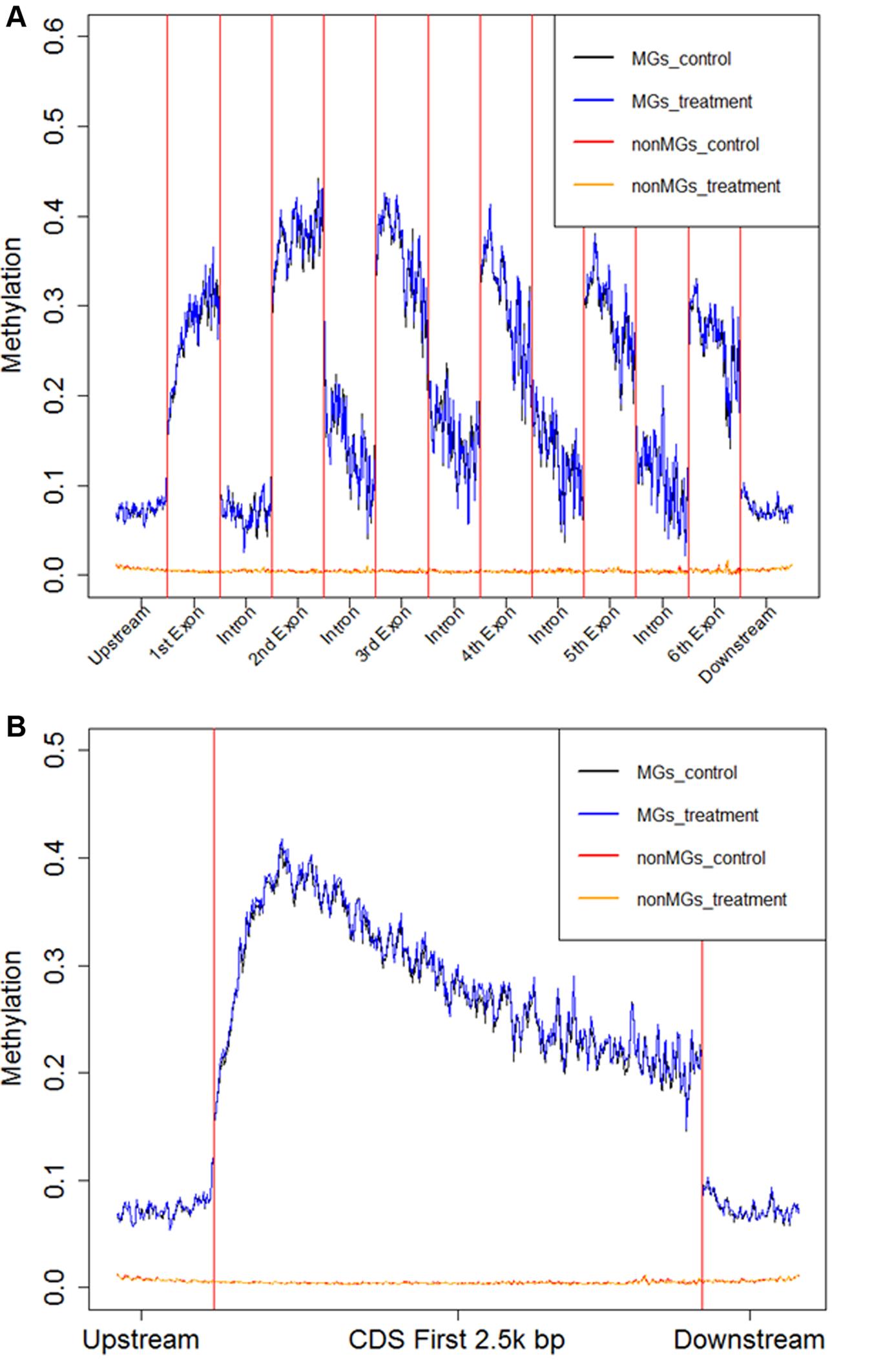 Average fractional methylation levels in different gene regions.