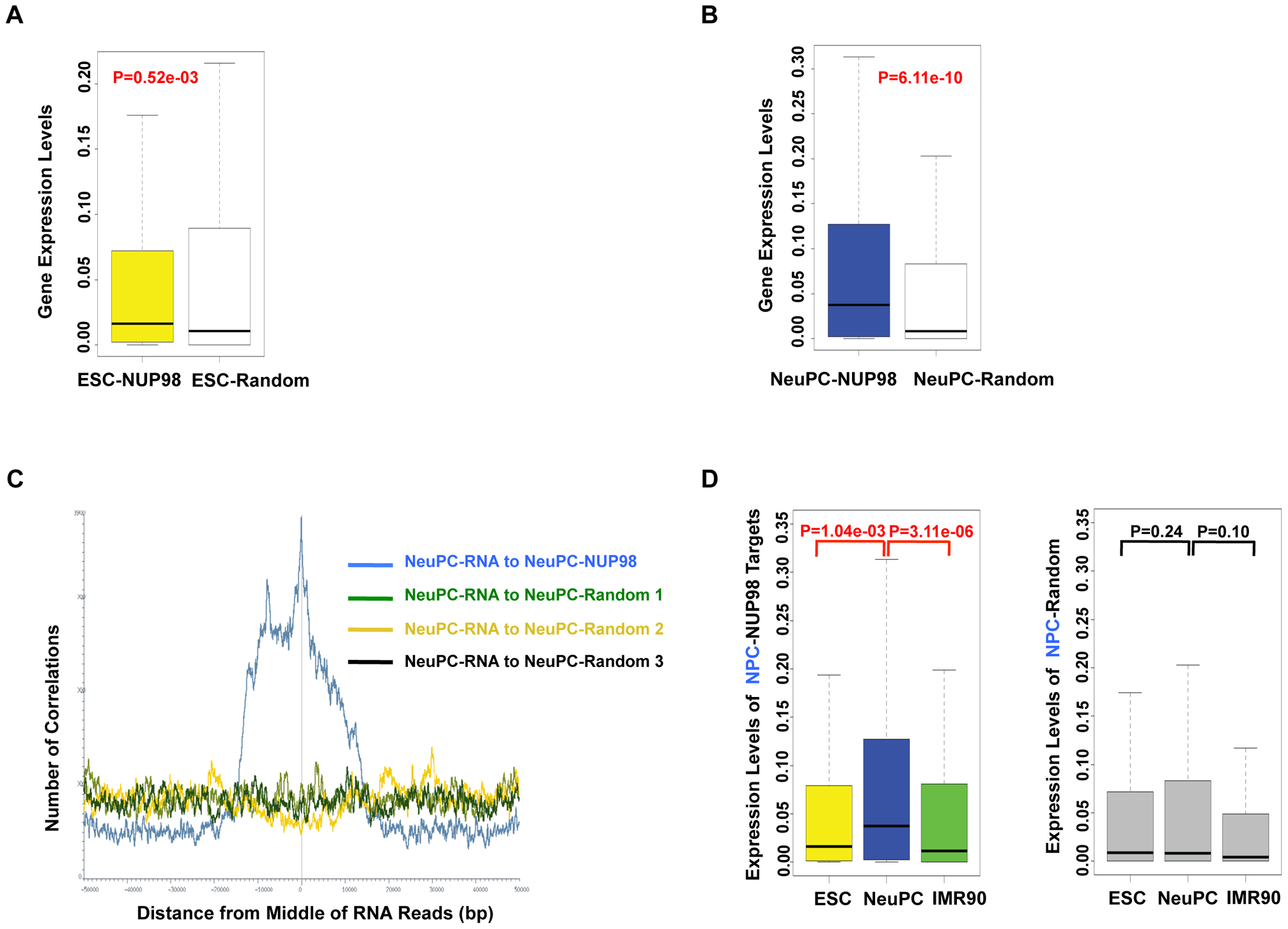 NUP98 binding correlates with developmental gene expression in neural progenitor cells.