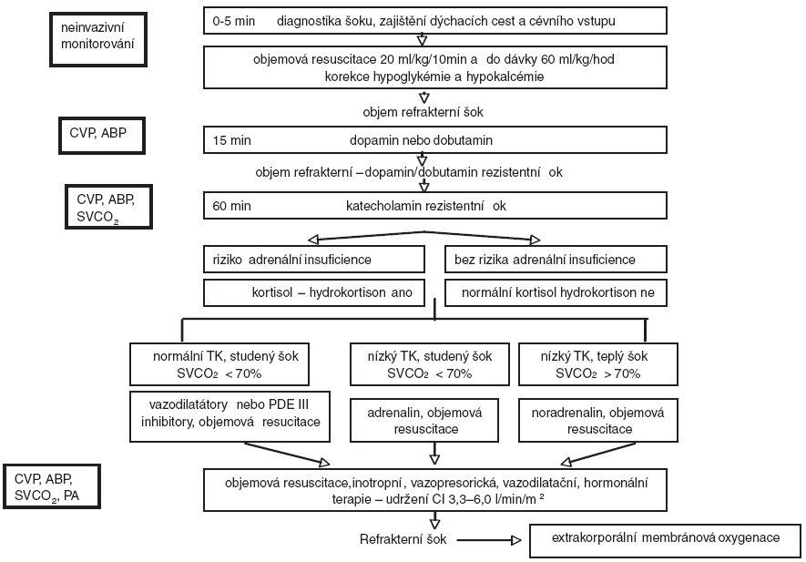 Postup při léčbě a monitorování dětského septického šoku (volně podle [54]) (PA – měřený tlak v plicnici)