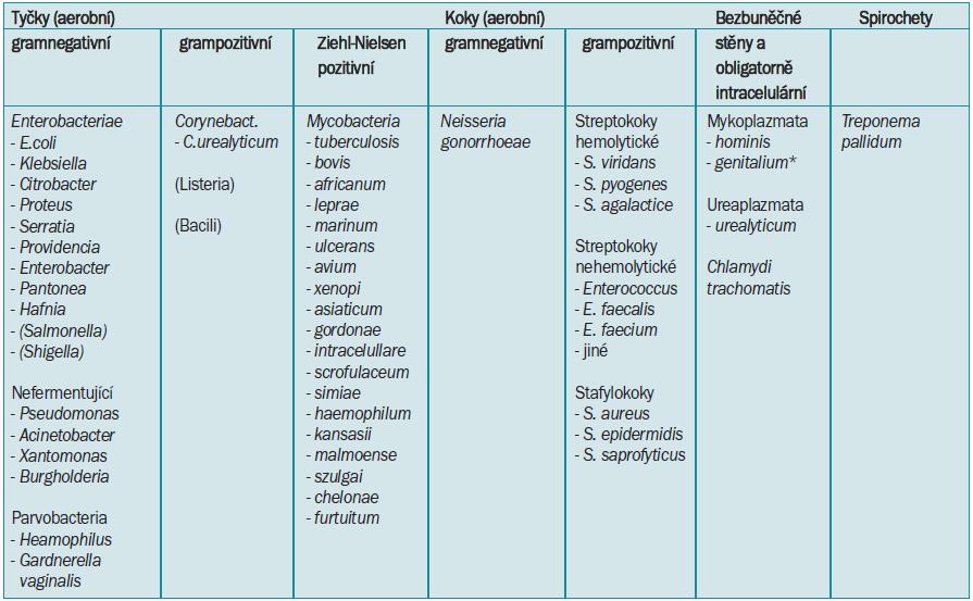 Dělení klinicky relevantních bakteriálních původců IMC.