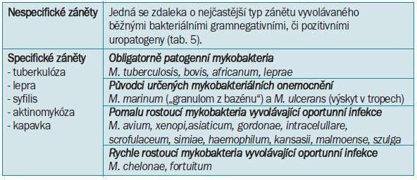 Dělení zánětů podle histopatologických změn.