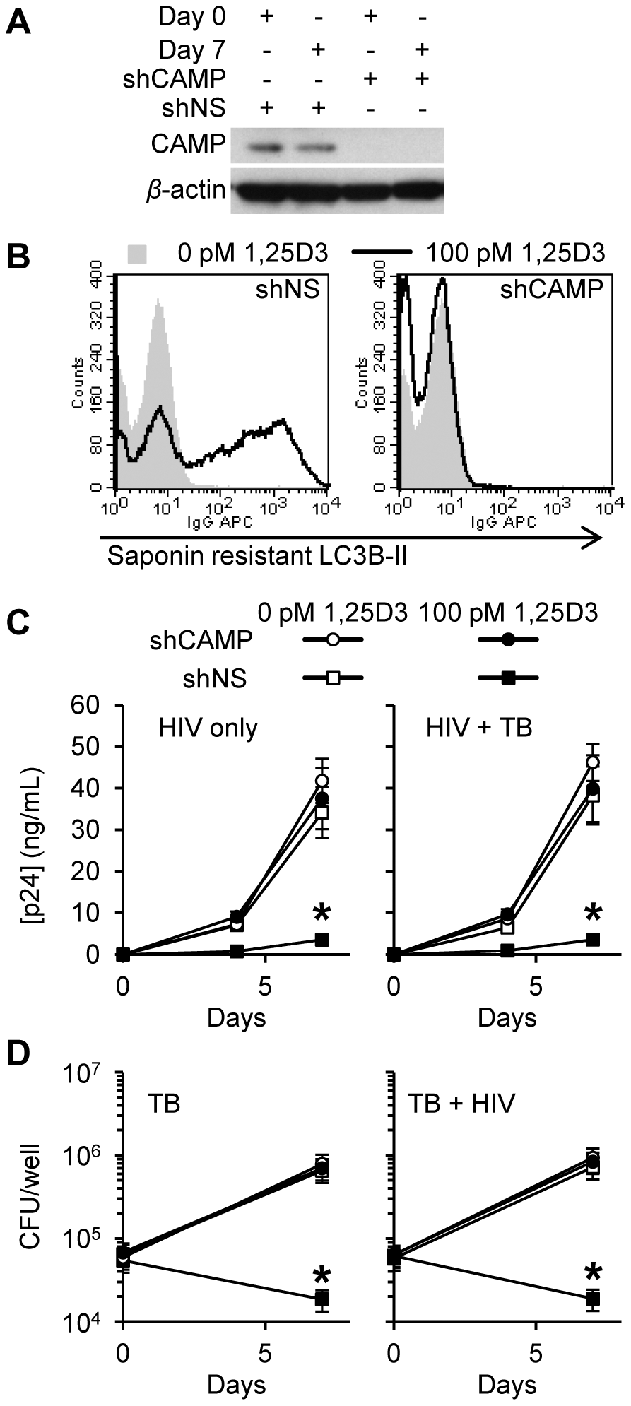 Inhibition of HIV and <i>M. tuberculosis</i> by 1,25D3 is CAMP and autophagy dependent.