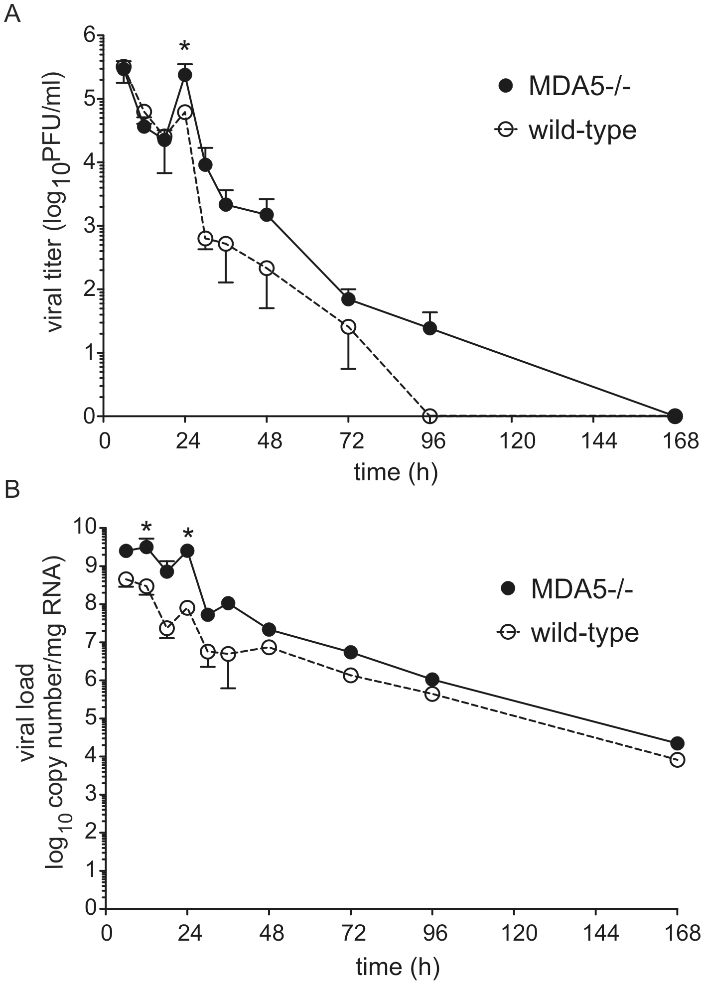 RV1B titer and copy number in MDA5−/− mice.