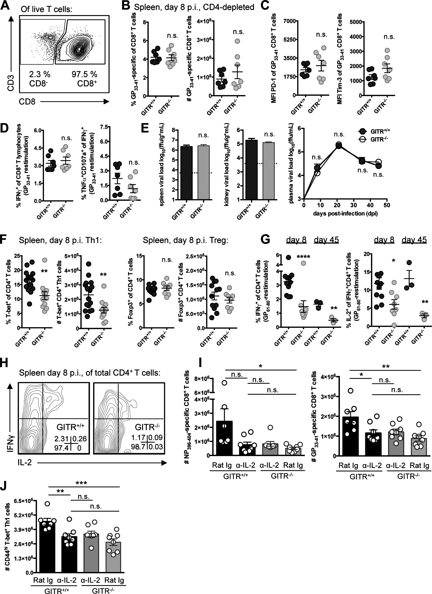 A CD4 T cell population underscores the defective immunity in GITR<sup>-/-</sup> mice, and GITR<sup>-/-</sup> mice have fewer IL-2-producing Th1 cells.