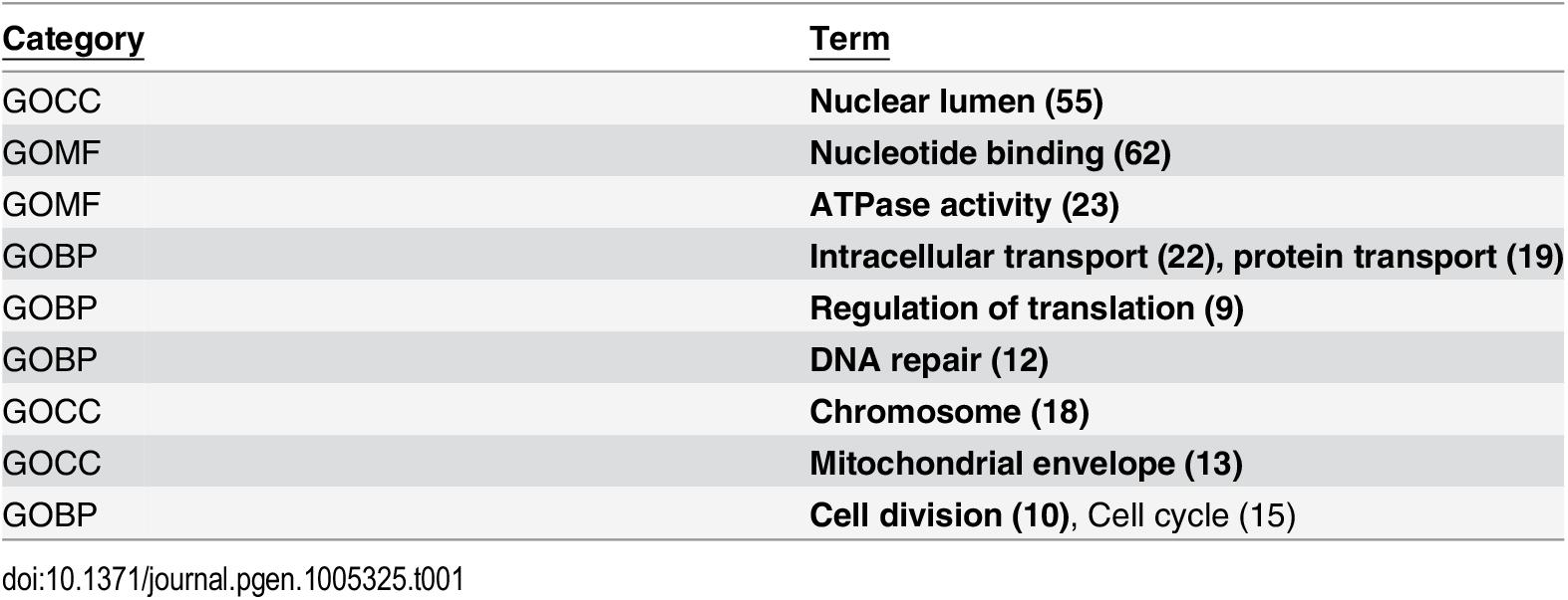 Gene Ontology categories of 205 putative RND3 binding partners.