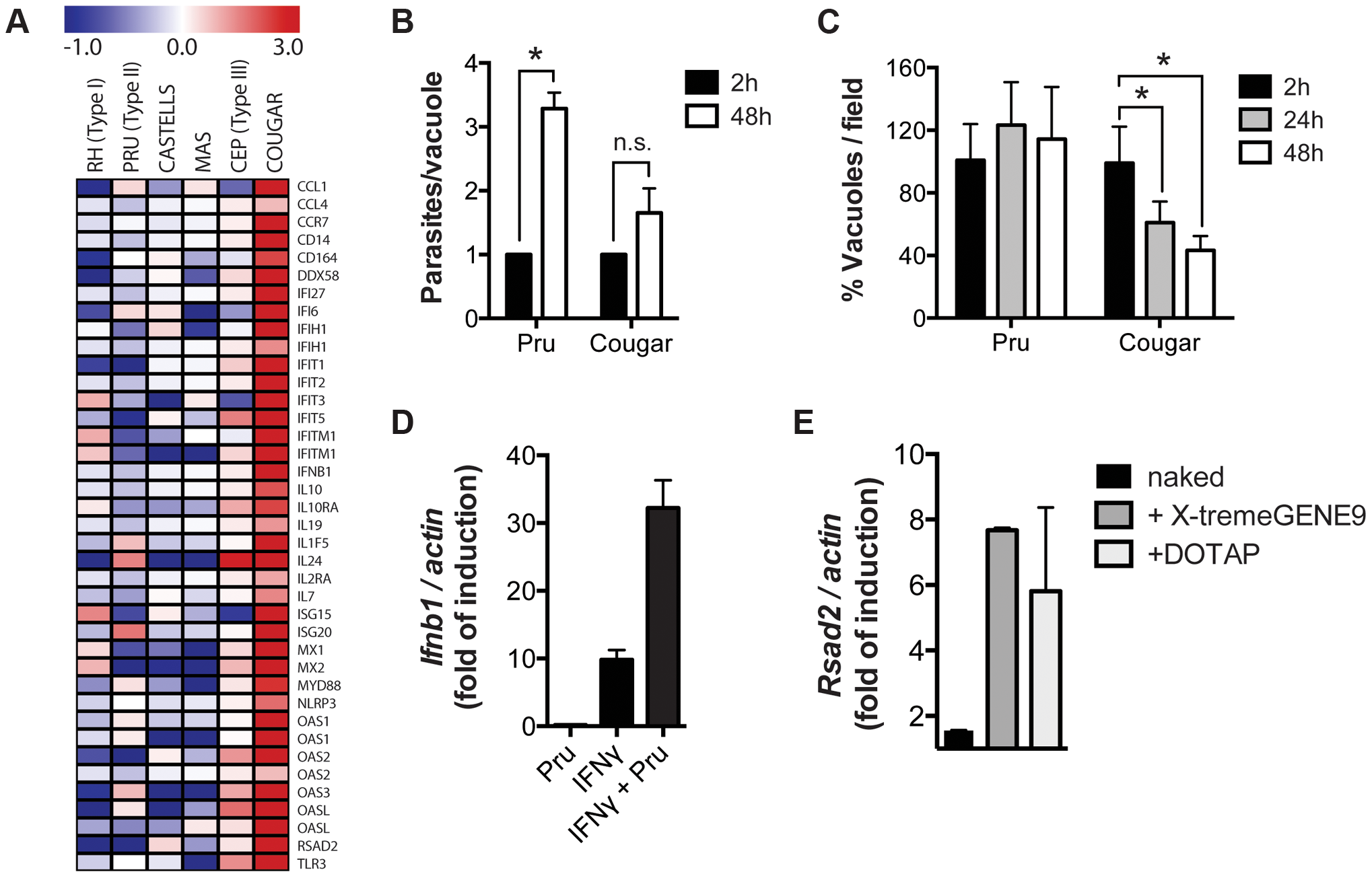 Killing of intracellular parasites is associated with IFNβ production.