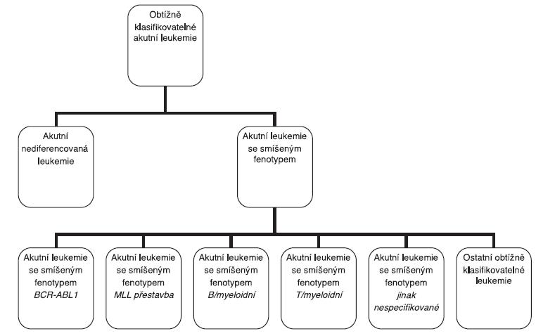Rozdělení obtížně klasifikovatelných akutních leukemií dle revidované WHO 2008.