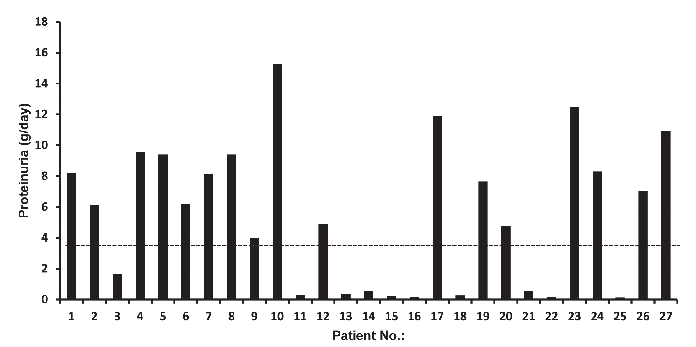 Fig. 2. Quantification of 24-hour proteinuria in patients with AL amyloidosis (n = 27).