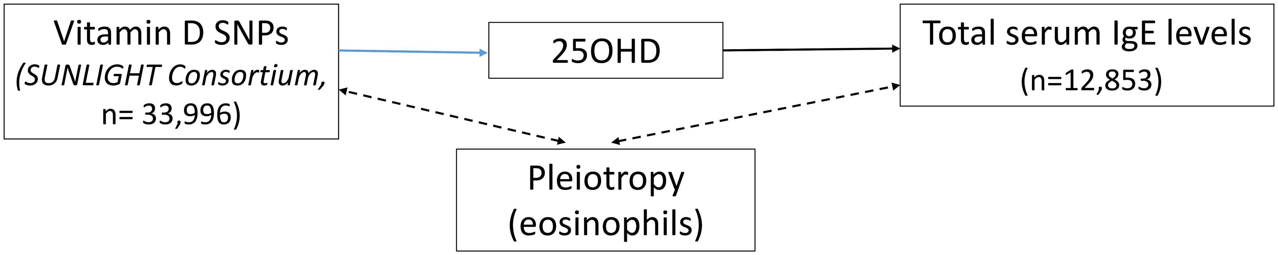 Direct Acyclic Graph (DAG) of the Mendelian randomization analysis for Immunoglobulin E (IgE) levels.