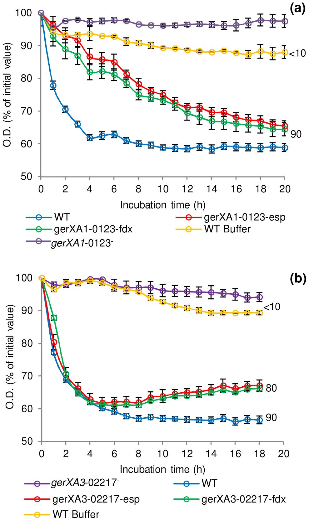 Germination rates of complemented GR mutants for <i>C. botulinum</i> and <i>C. sporogenes</i>.