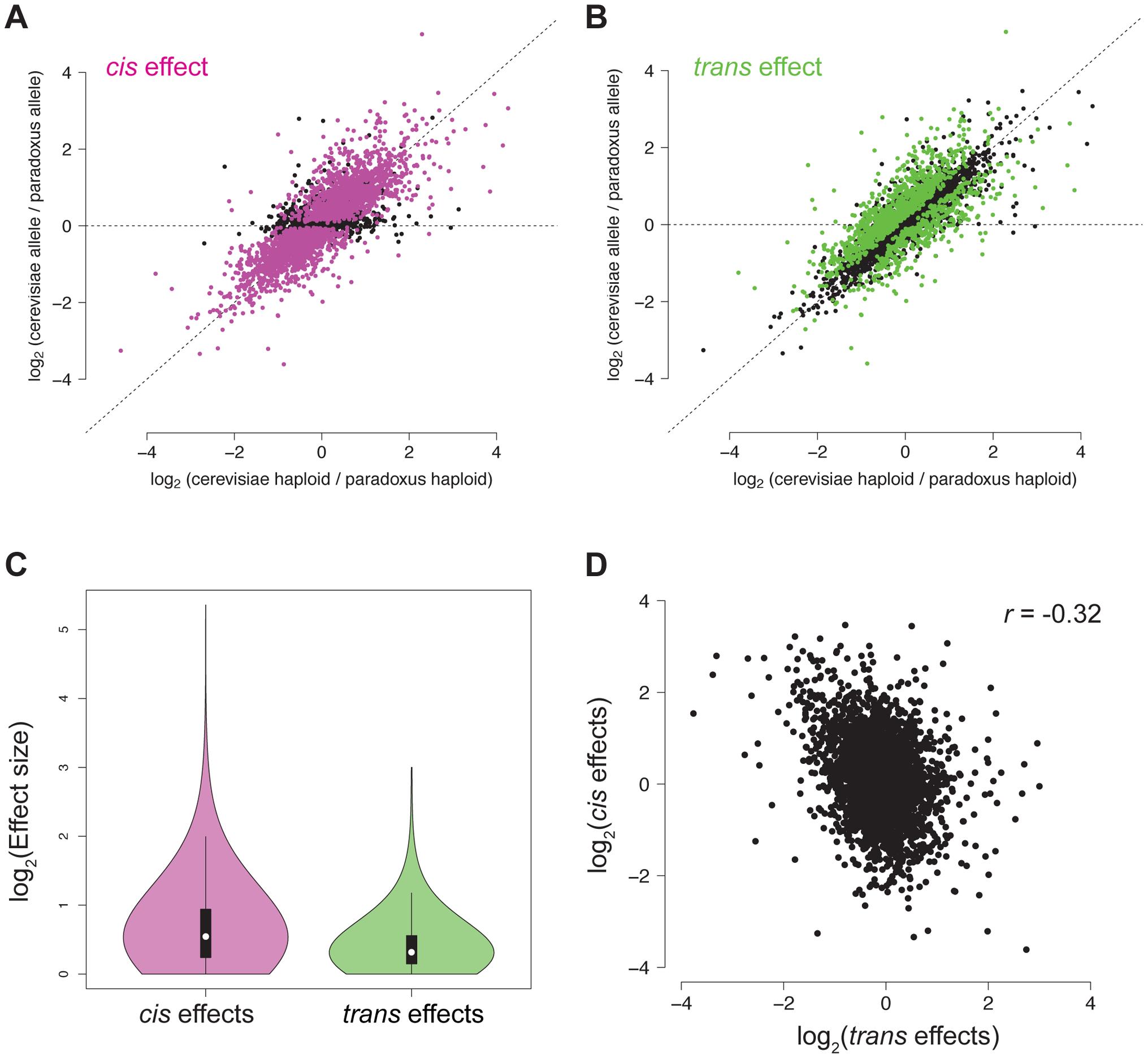 <i>Cis</i> and <i>trans</i> effects on chromatin accessibility.