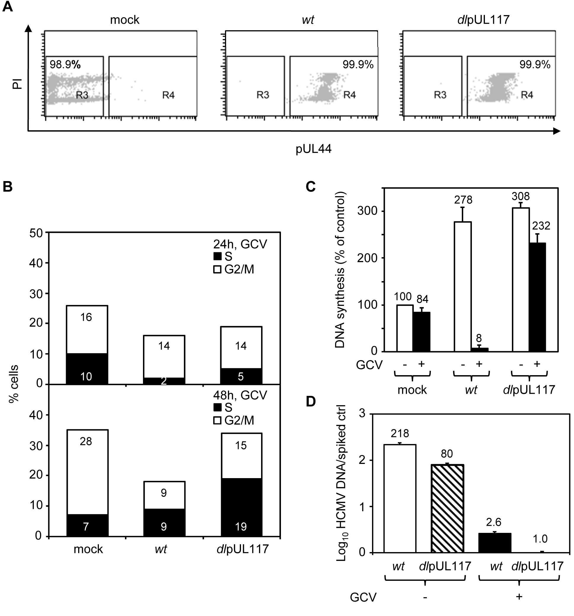 pUL117 was required to block host DNA synthesis of G0-synchronized HFFs during HCMV infection.