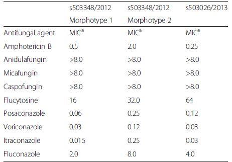 Antifungal susceptibility testing of <i>T. mycotoxinivorans</i> isolated in 2012 (Morphotype 1 and Morphotype 2) and 2013