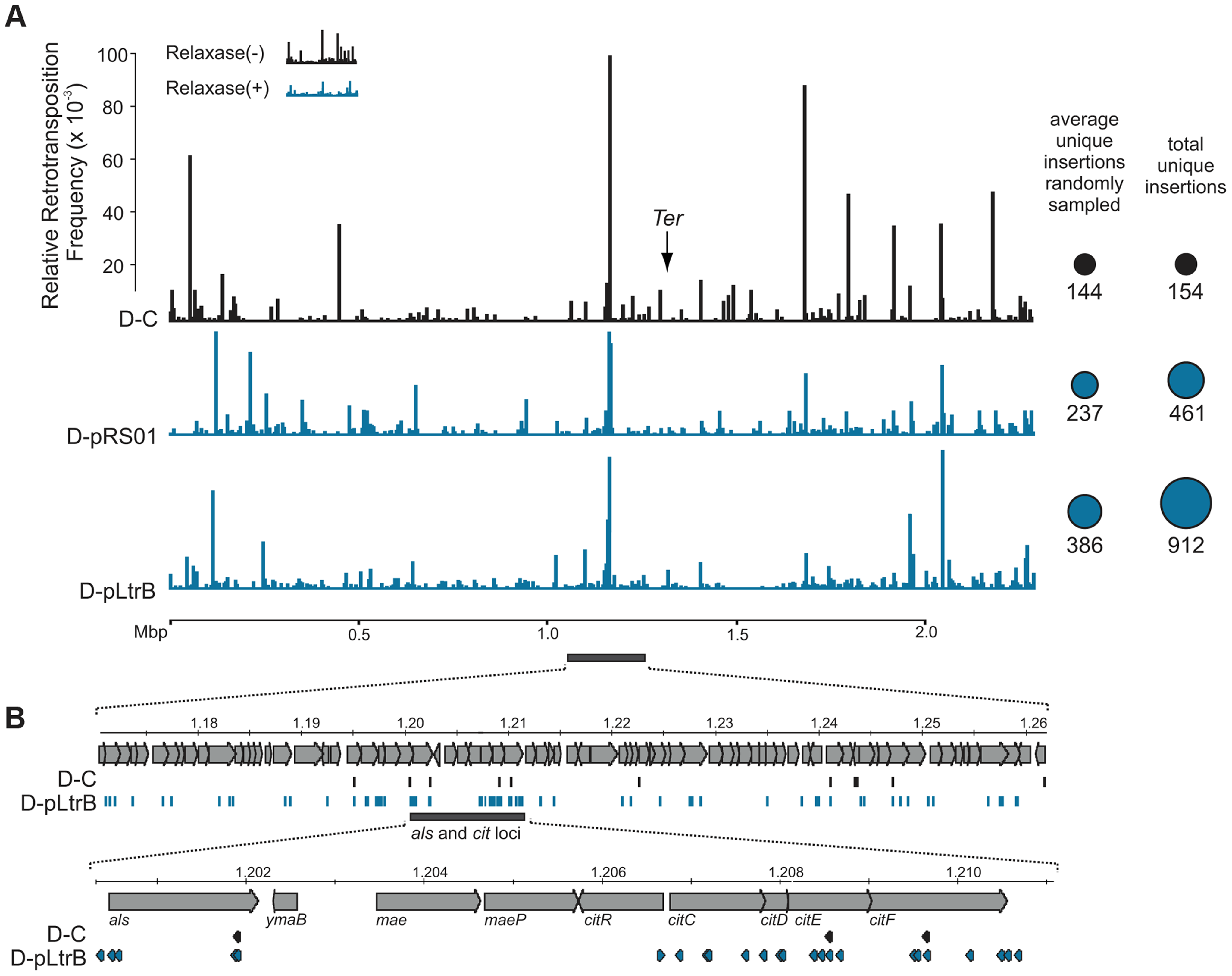 Mapping of retrotransposition events along <i>L. lactis</i> chromosome.