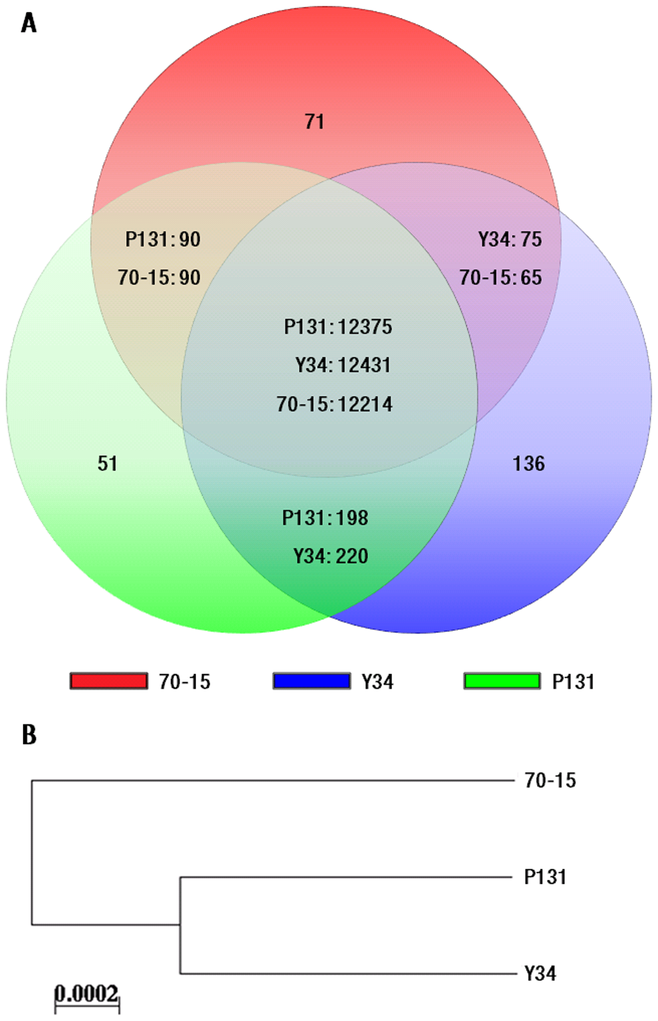 Gene pool analysis.