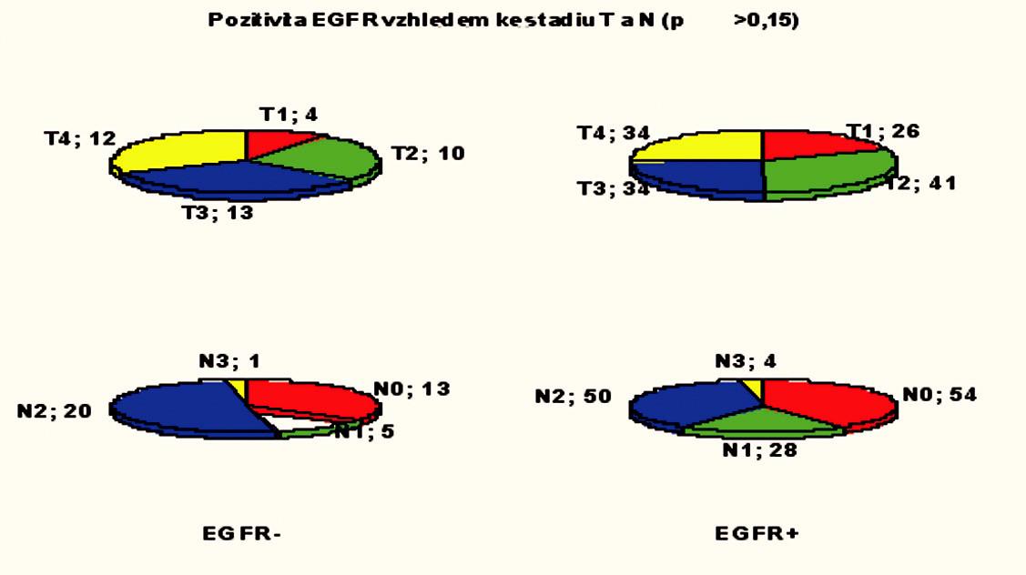 Pozitivita exprese EGFR vzhledem ke stadiu T a N.