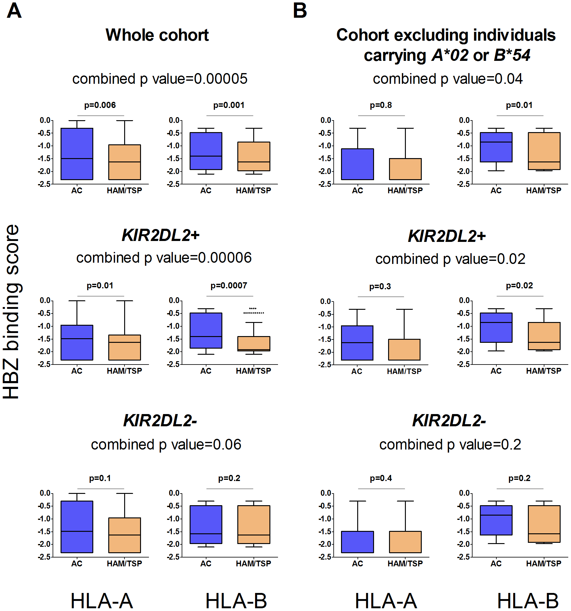 The protective effect of binding HBZ is enhanced by <i>KIR2DL2</i>.