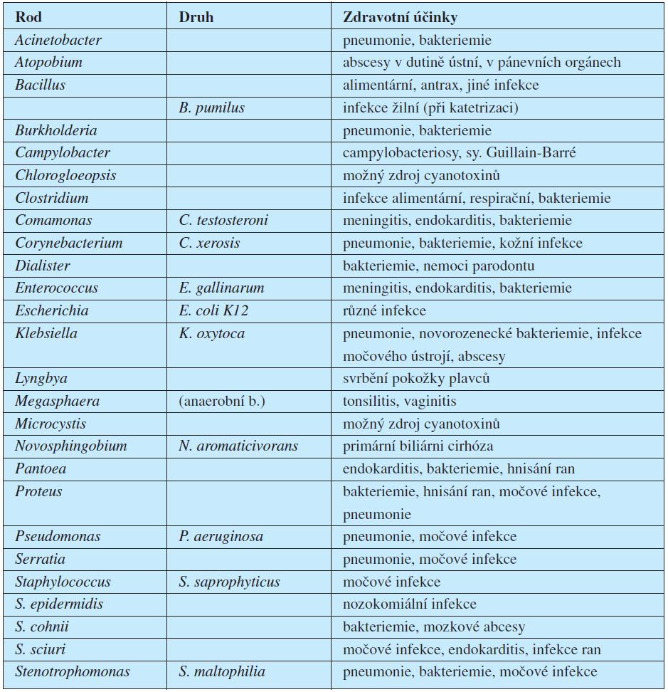 Detekované bakteriální druhy v cigaretovém tabáku a jejich účinky na zdraví (upraveno podle 16).