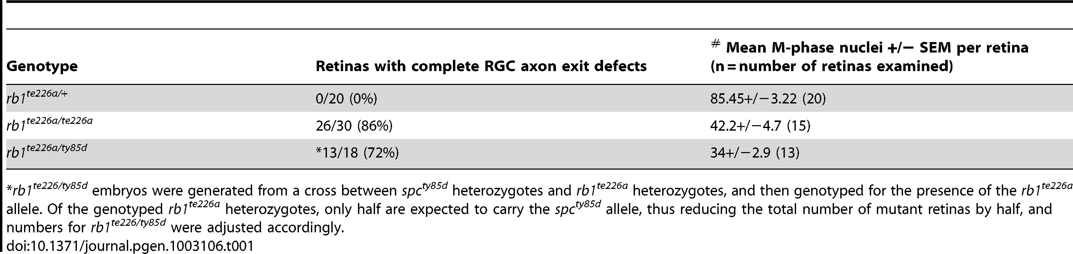 Comparison of the retinal phenotypes observed at 36 hpf in the two <i>rb1</i> mutant alleles.