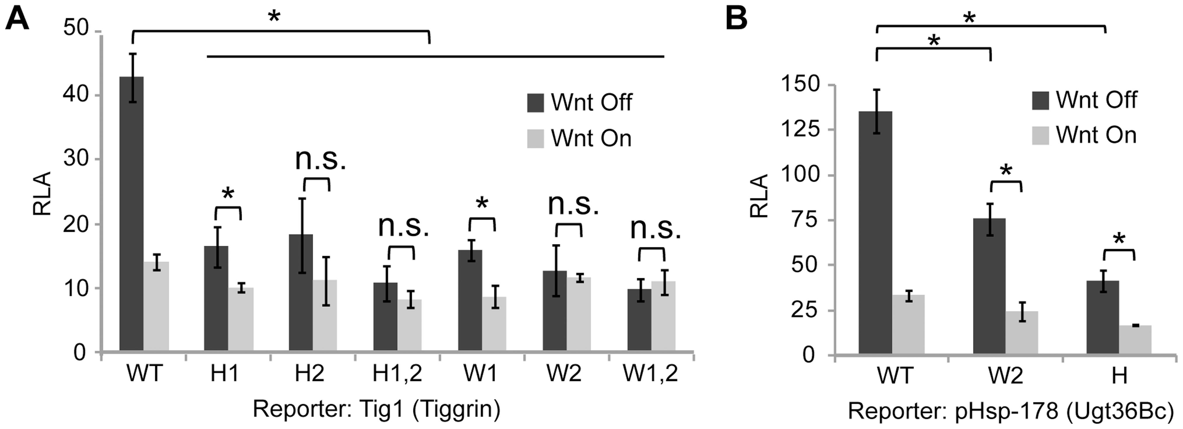 r-Helper and WGAWAW sites are required for Wnt-regulation of <i>Tig</i> and <i>Ugt36Bc</i> W-CRM reporters.