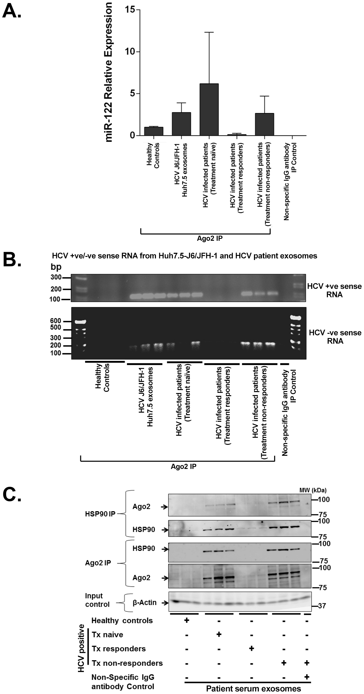 Exosomes from Huh7.5 cells and HCV infected patients' sera harbor replication competent HCV RNA and RISC complexes that enhance HCV infection.