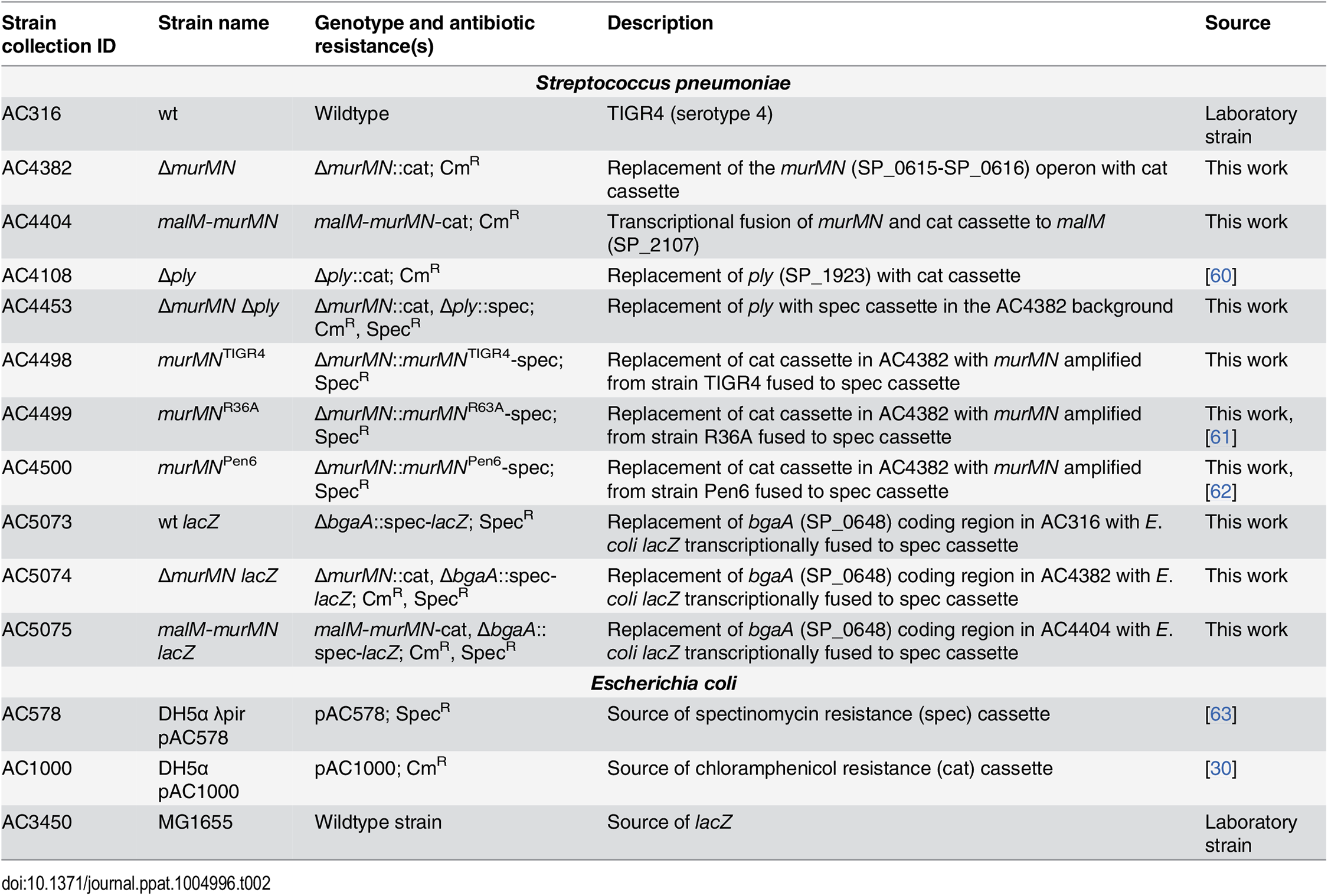 Strains and plasmids used in the present study.