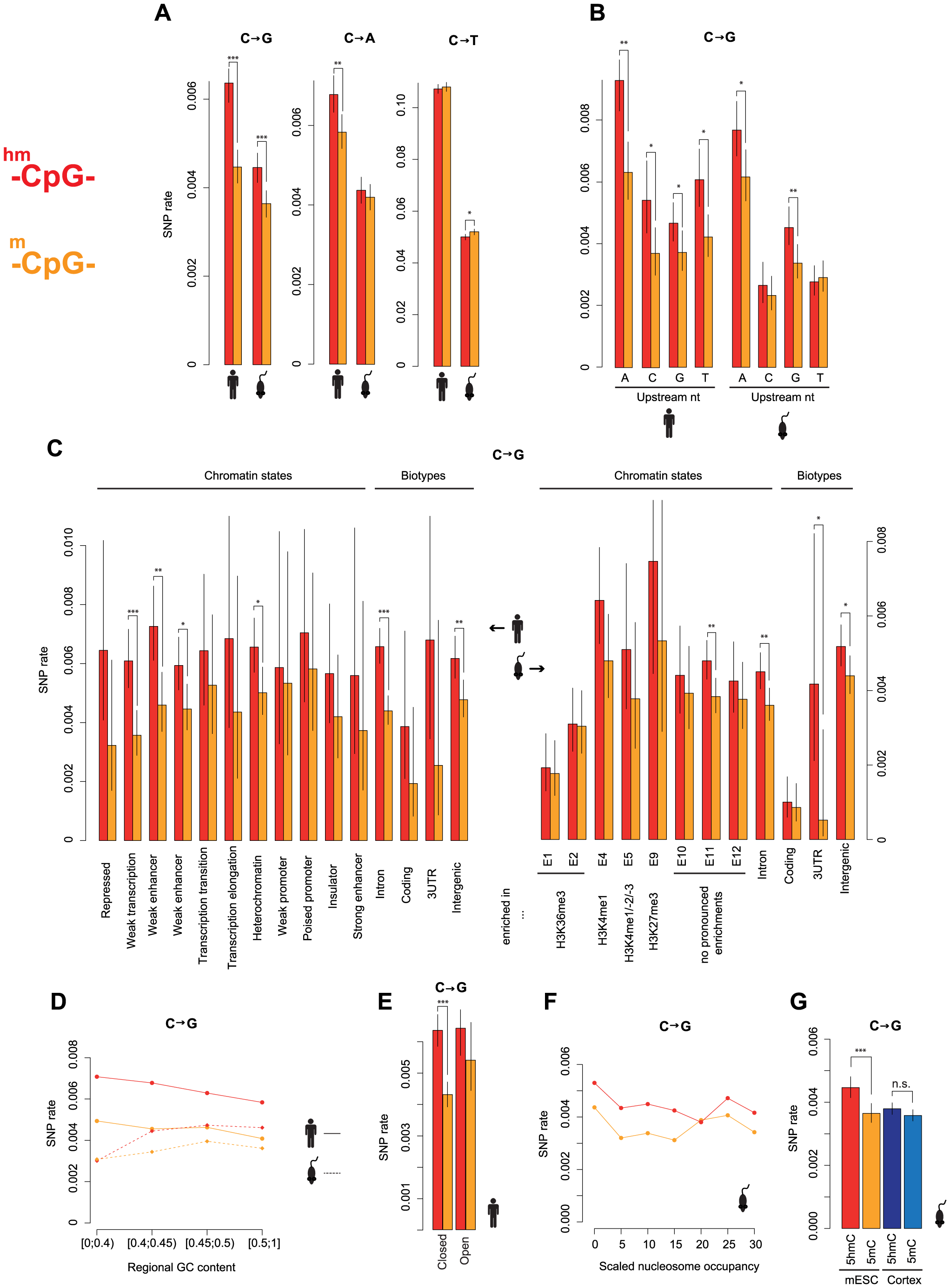 Elevated C to G rates at 5hmC sites across different sequence and functional contexts.