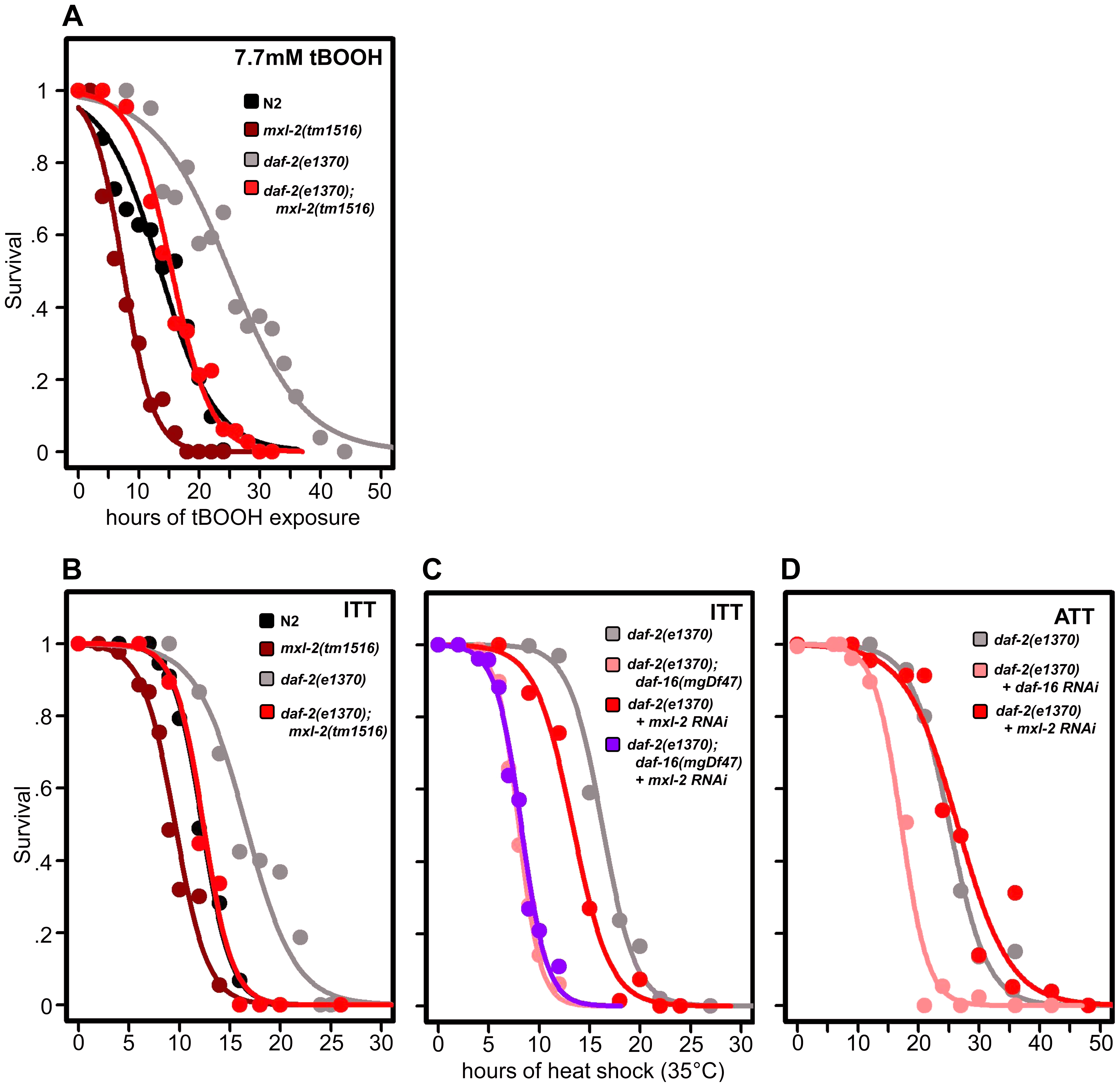 Loss of the Myc-Mondo complex impairs resistance to oxidative and thermal stress.