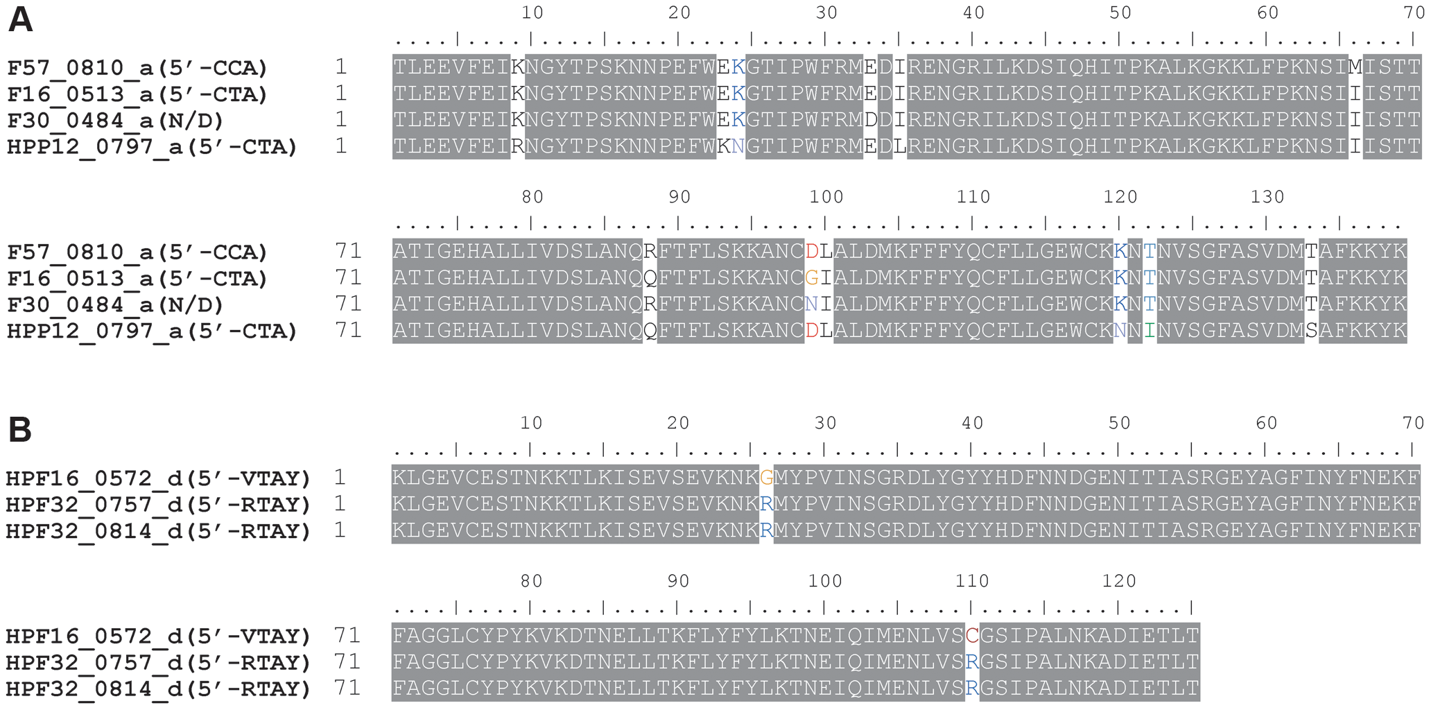 TRD sequences within a homology group differing in the recognition sequence.